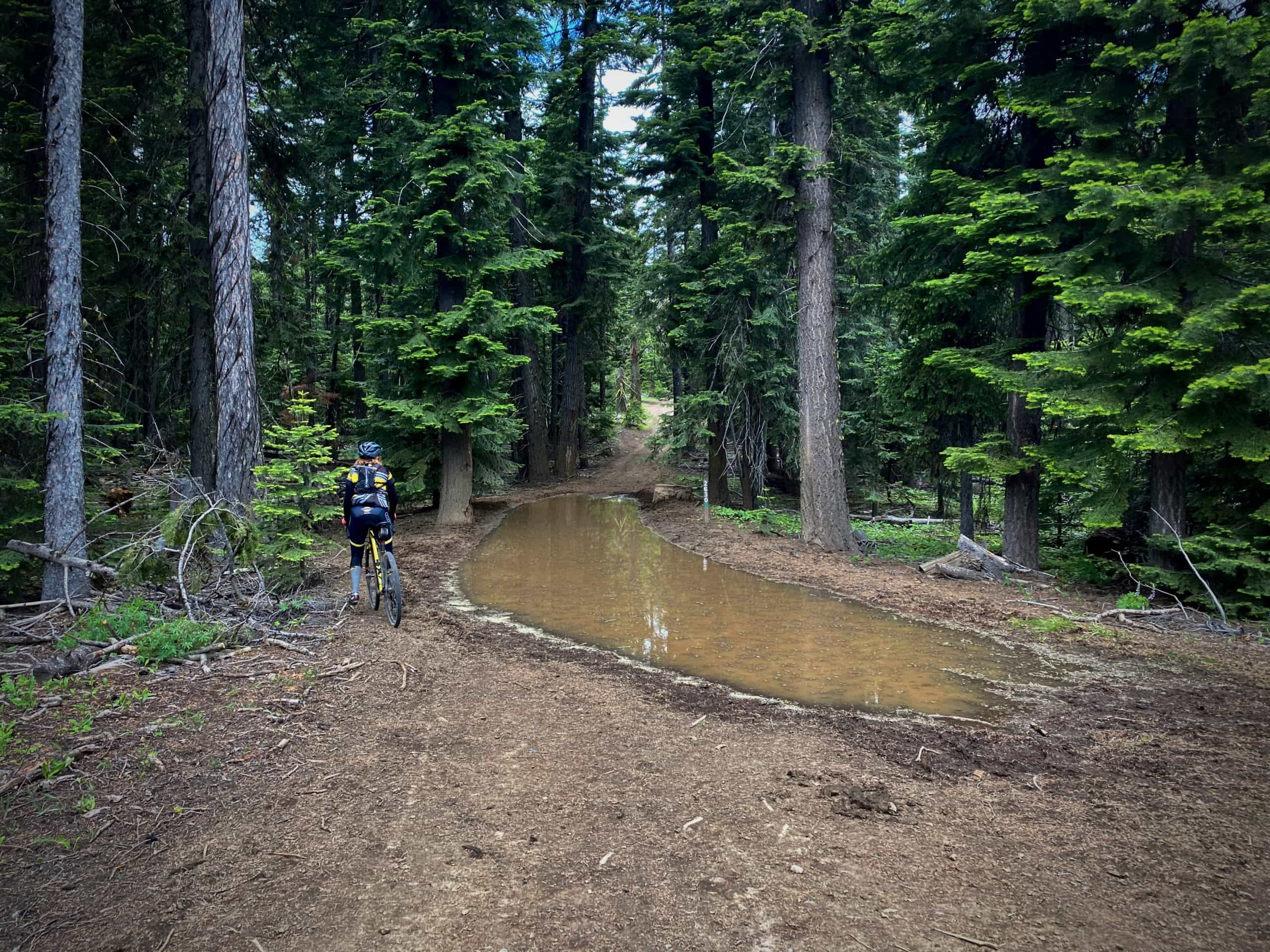 Cyclist walking around big muddy puddle on the Summit Trail in the Ochoco National Forest.