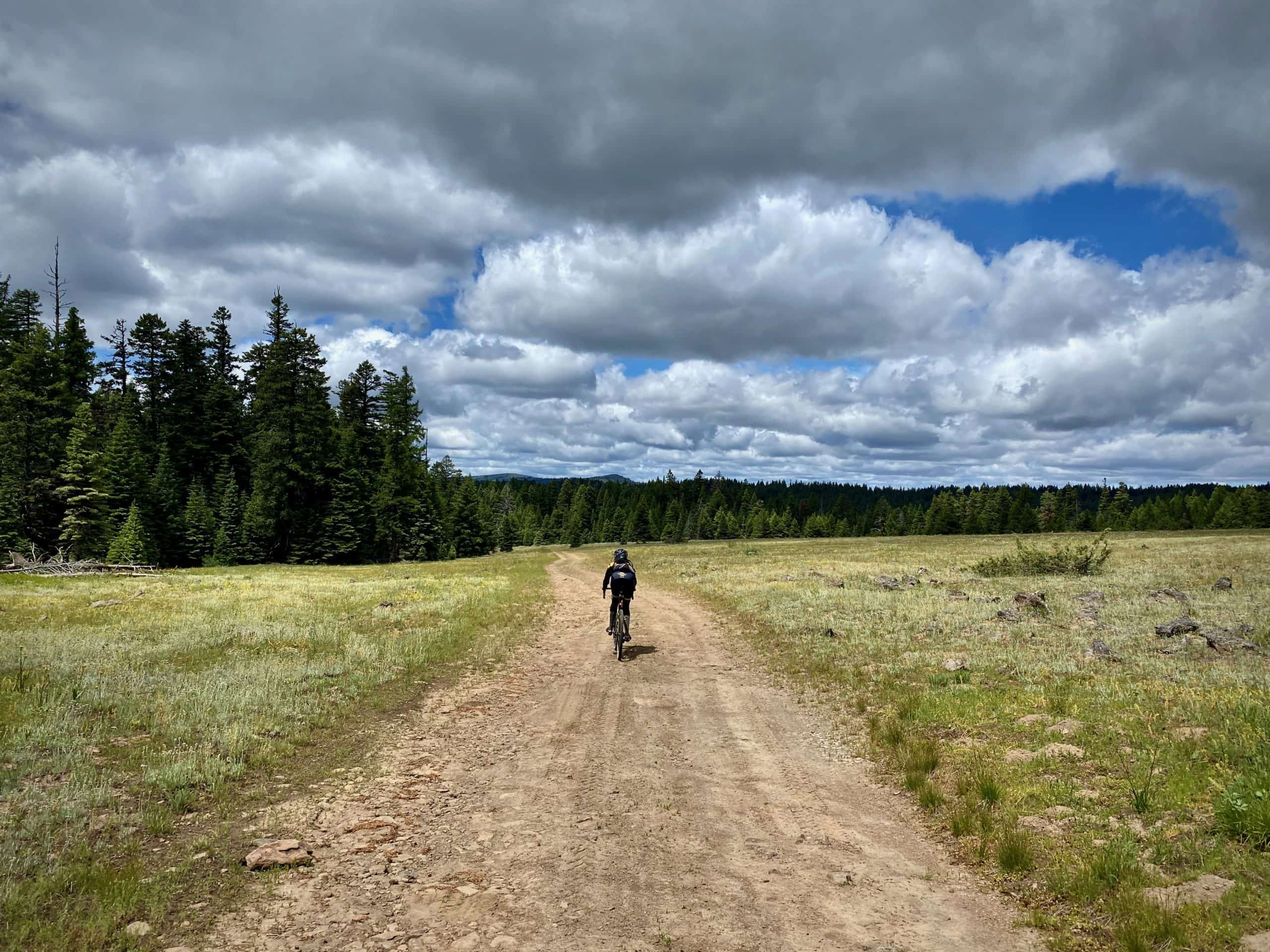 Gravel Girl on primitive forest service road near Mitchell, Oregon.