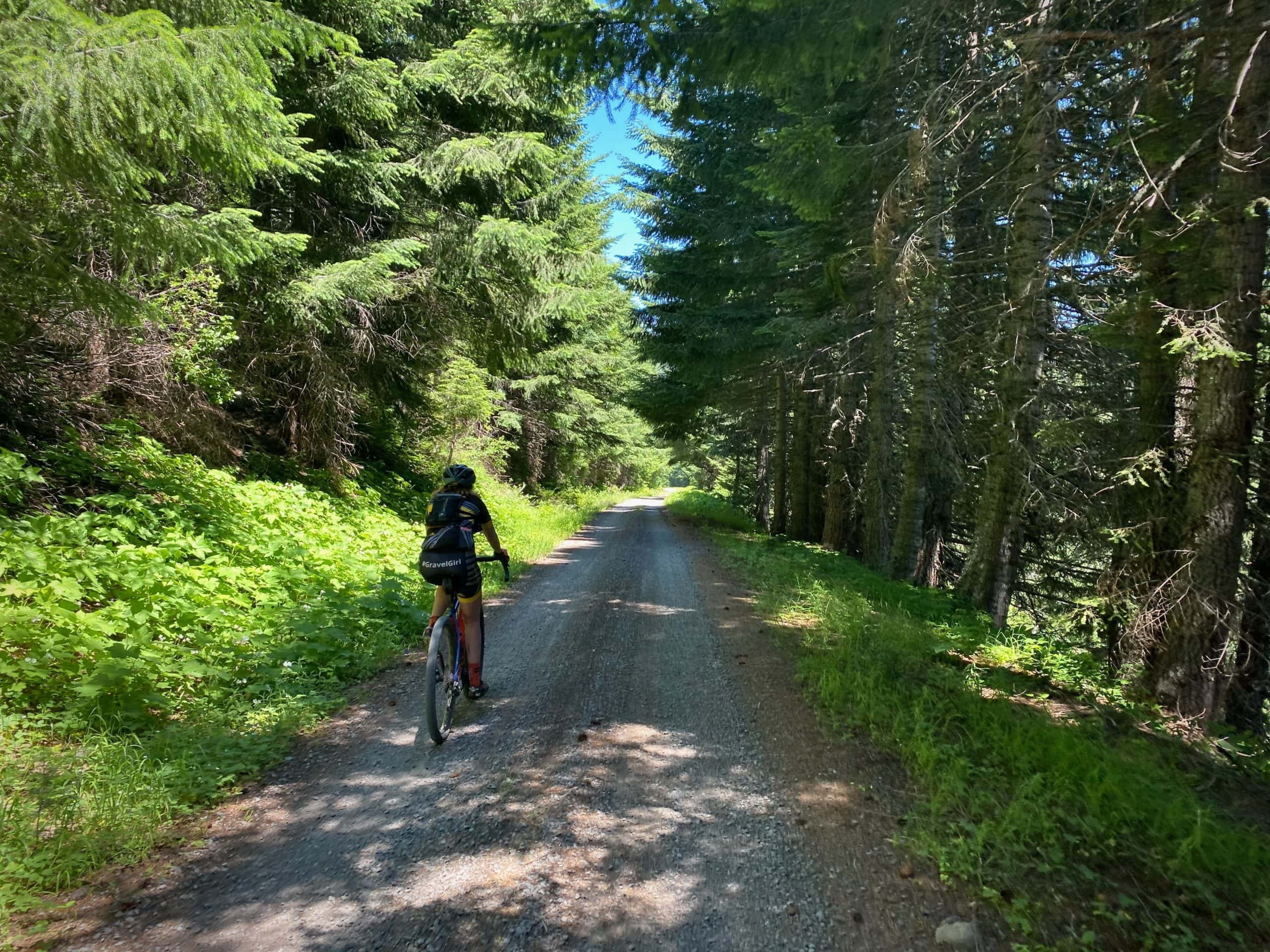 Gravel Girl riding under the forested canopy of a gravel road near the MIddle Fork of the Willamette River in Oregon.