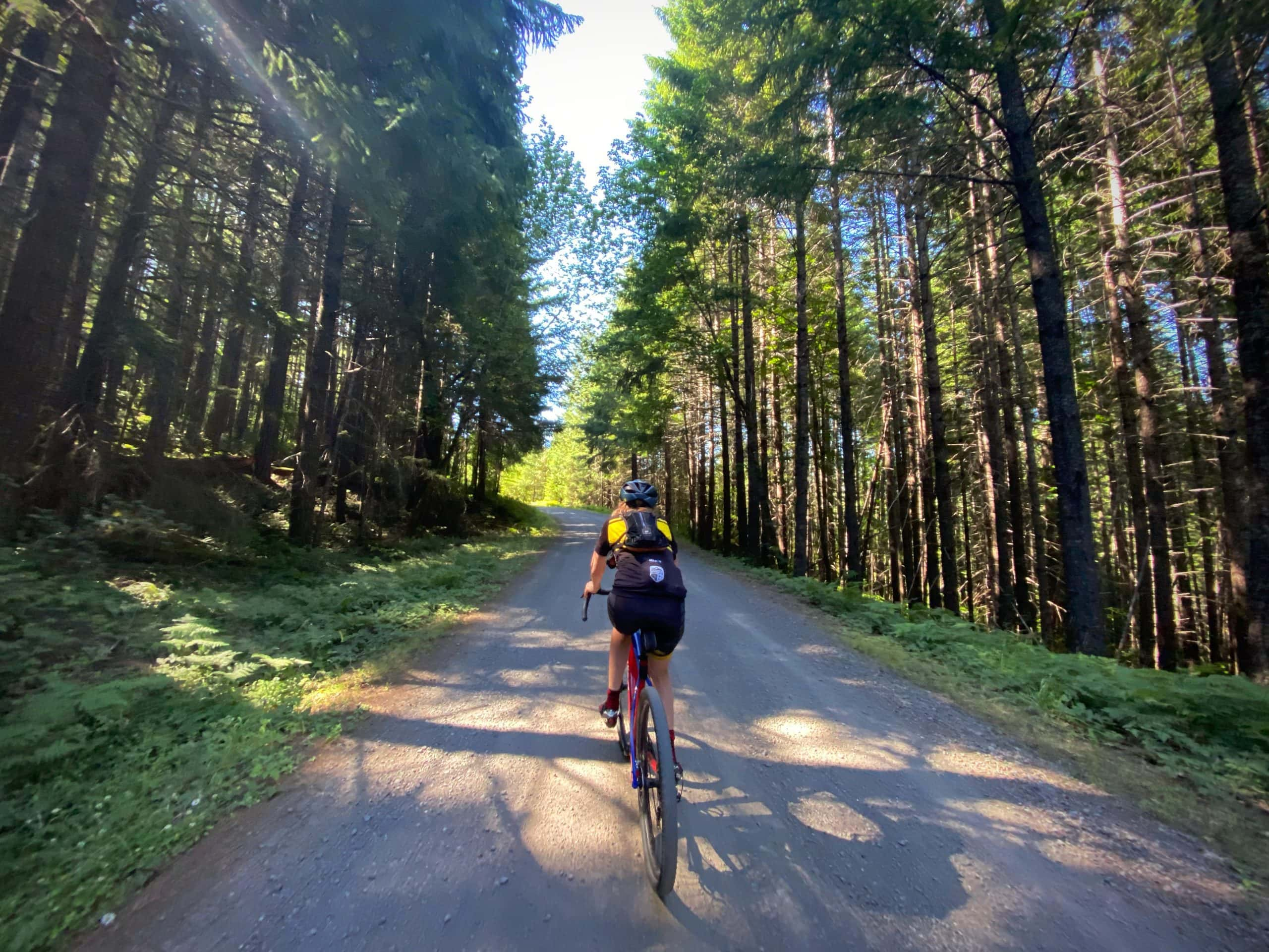 Gravel Girl on NF 2129 leading to Warner Ridge Lookout in the Willamette National Forest.