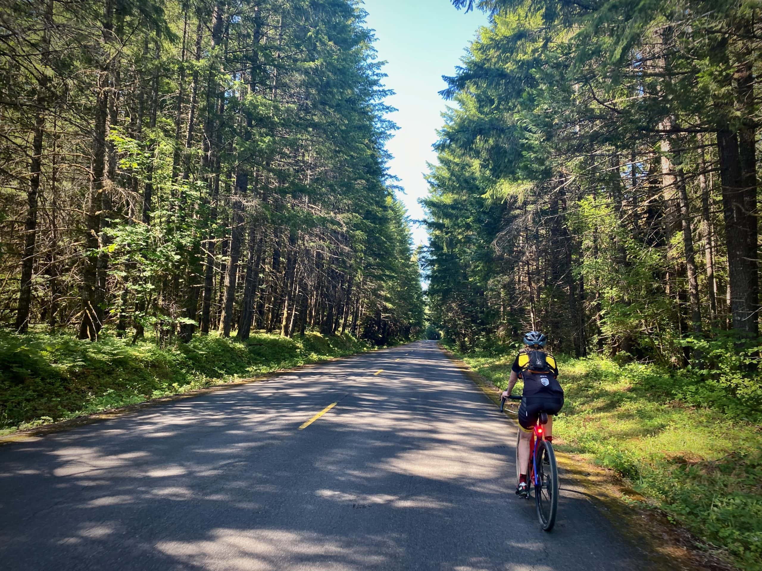 Cyclist on the double lane paved road, NF 21, in the Willamette National Forest.