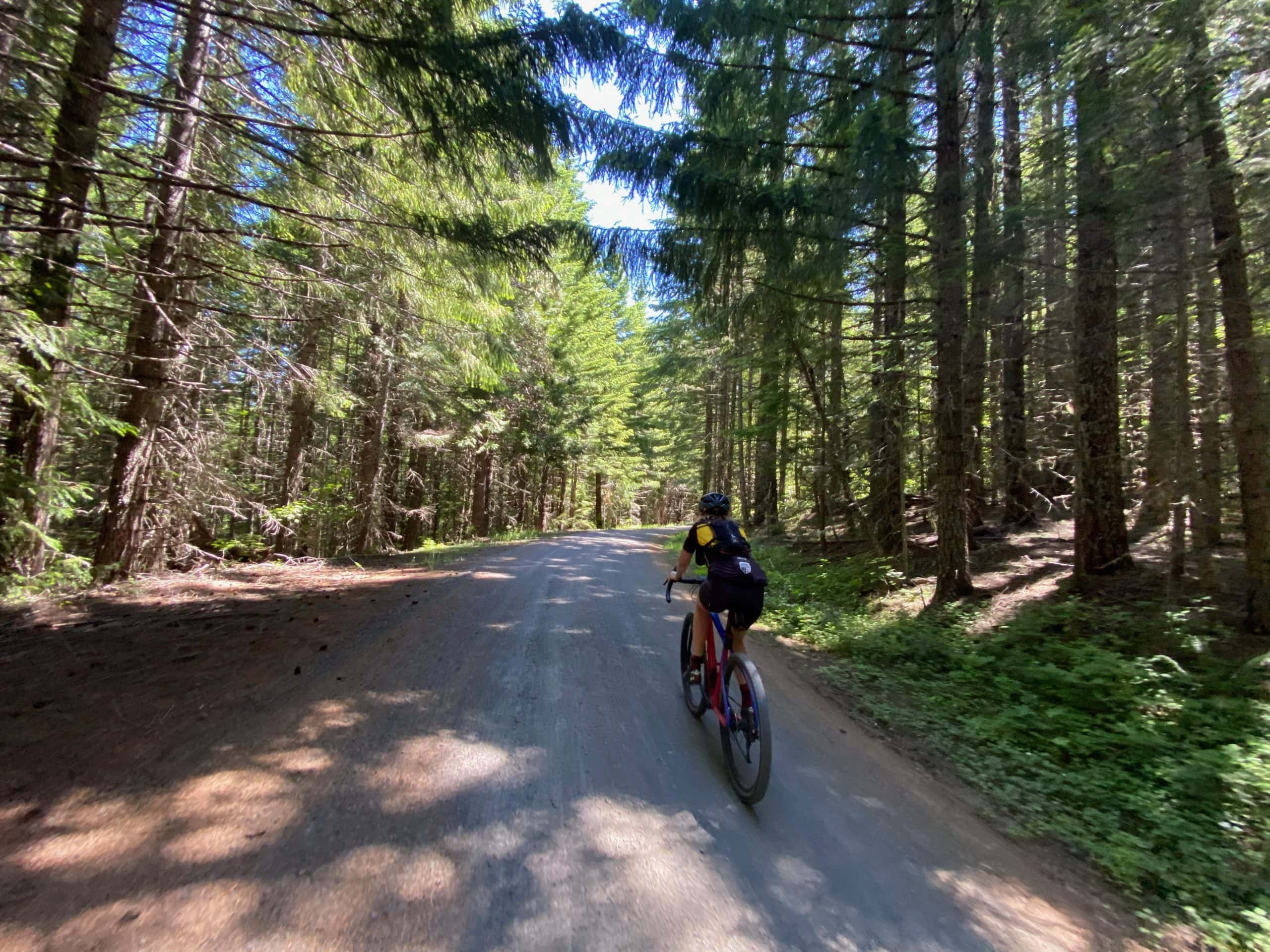 Gravel bike rider on NF 439 leading to Warner Ridge Lookout in the Willamette National Forest.