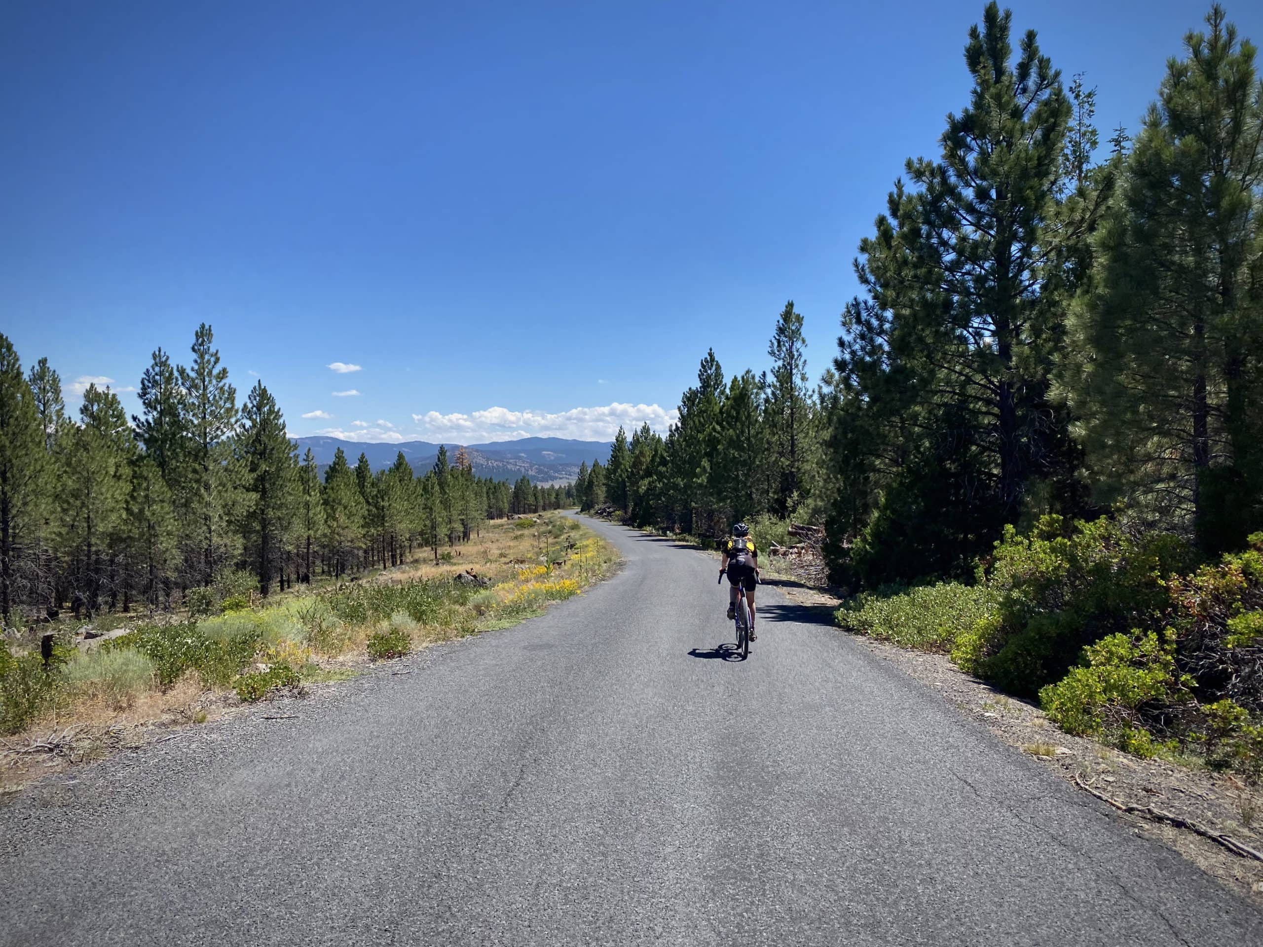 Woman cyclist on paved road NF 28 in the Fremont National Forest.