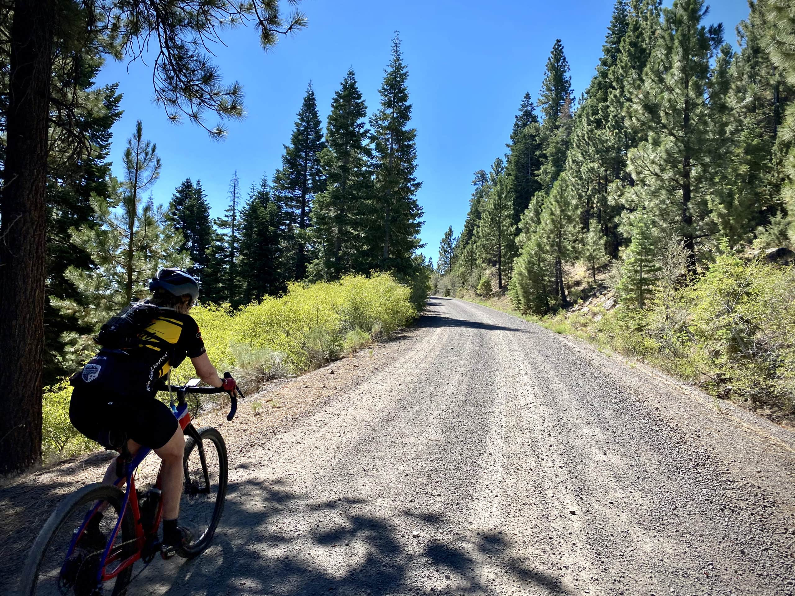 Cyclist on gravel road in the Fremont National Forest.