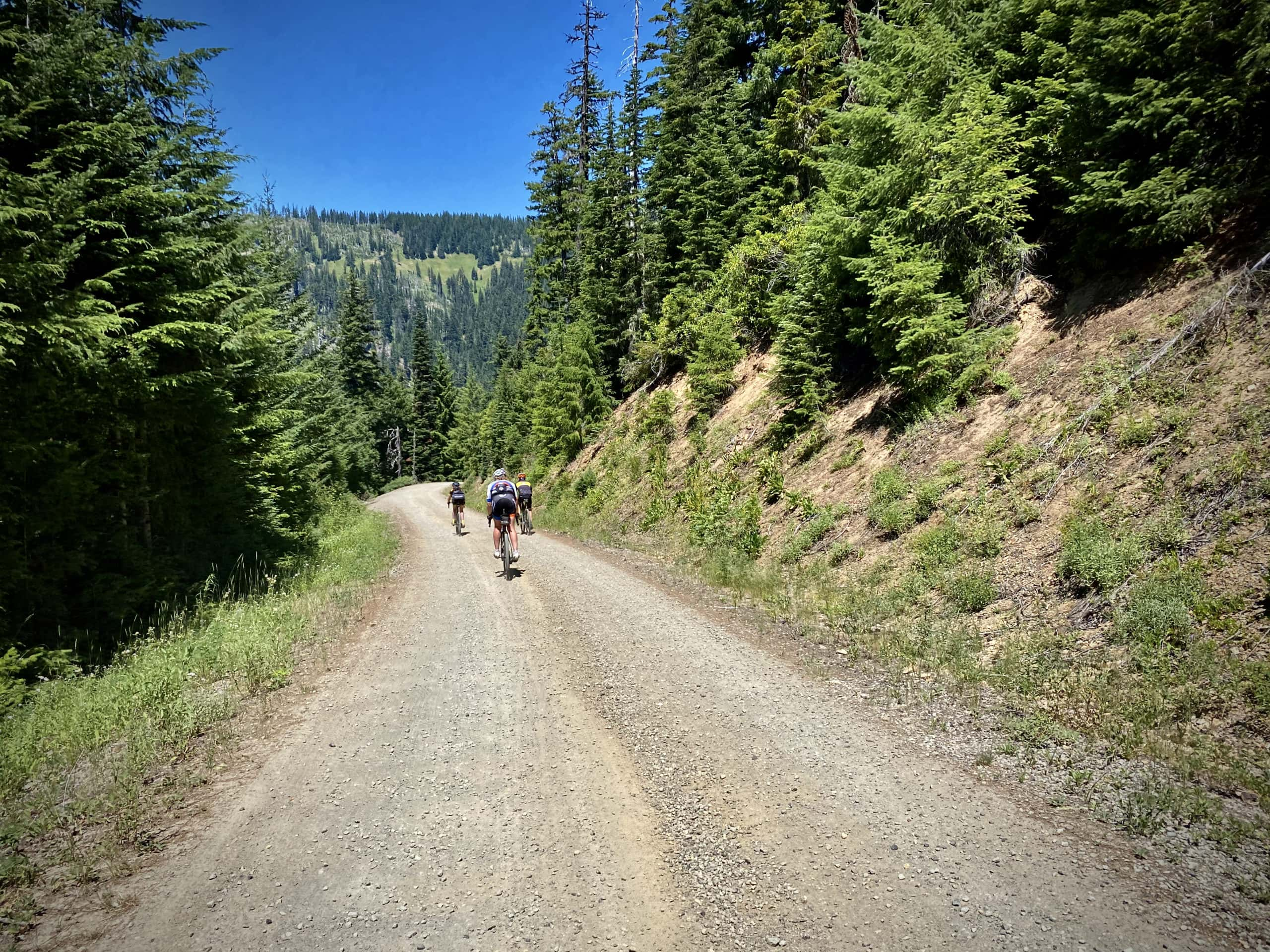 Cyclists descending the gravel portion of NF 23 in the Willamette National forest.