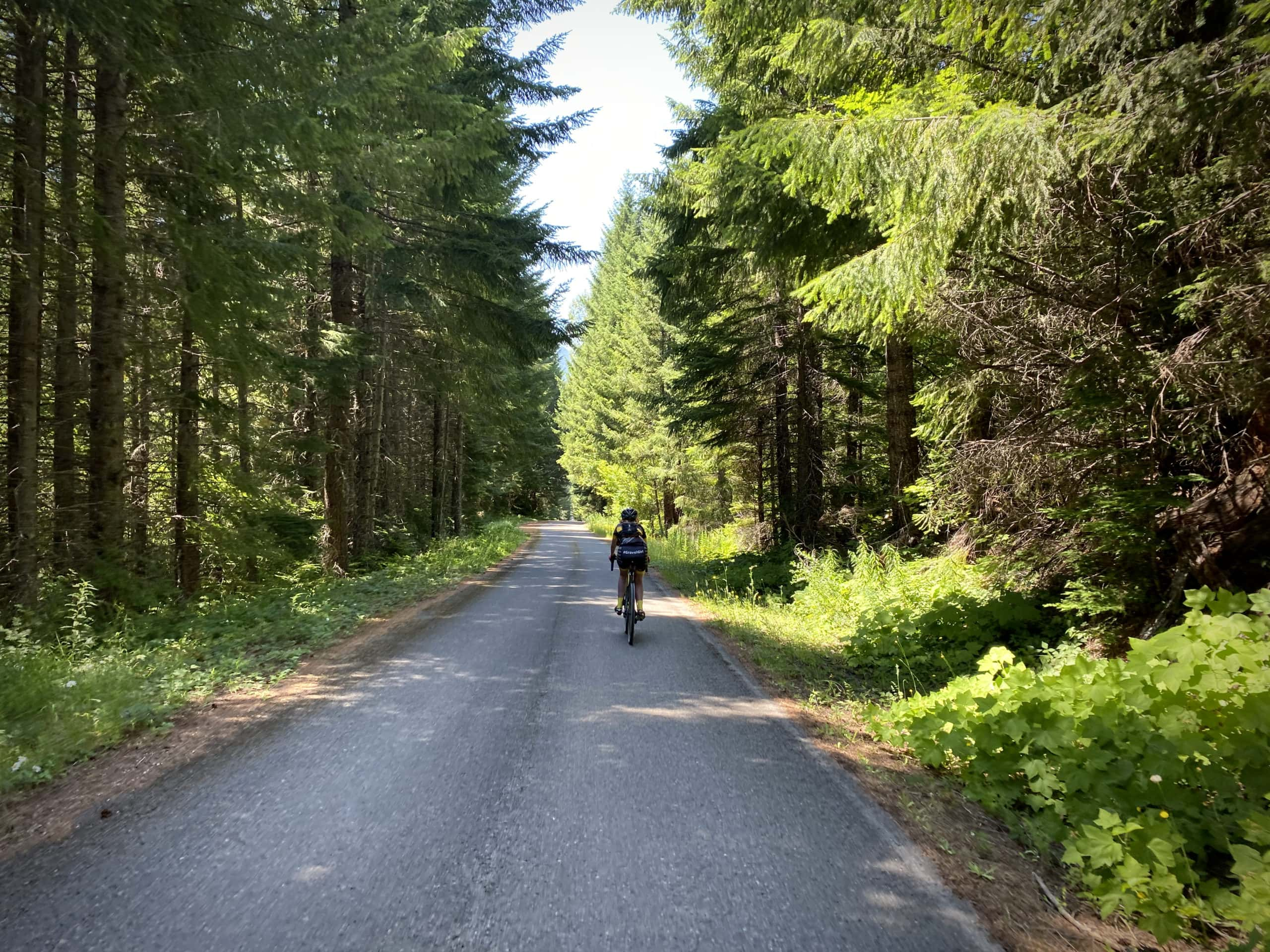 Cyclist on the paved portion of NF 23 along Hills Creek near Oakridge, OR.