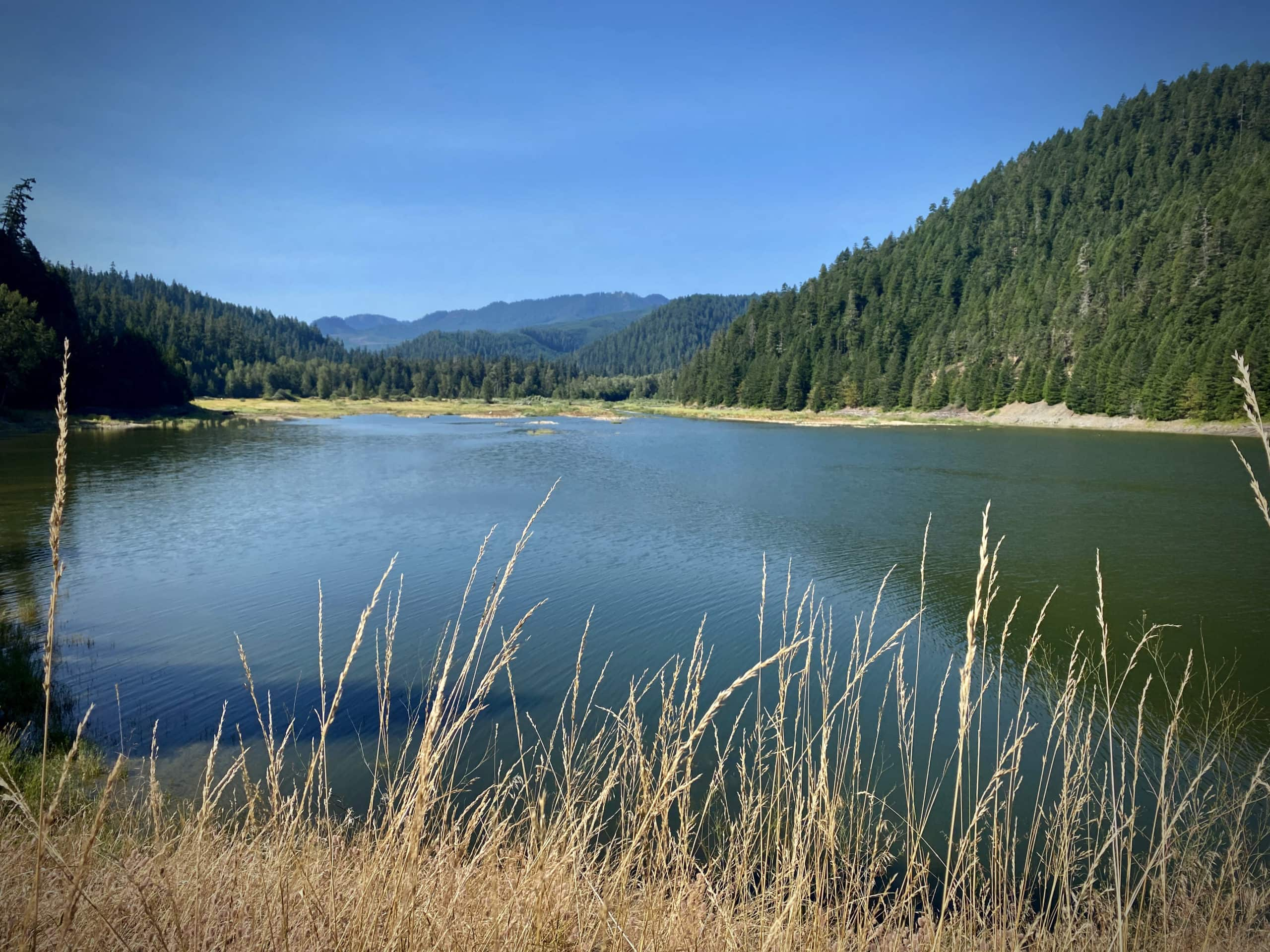The confluence of the Middle Fork of the Willamette River and Hills Creek Reservoir.