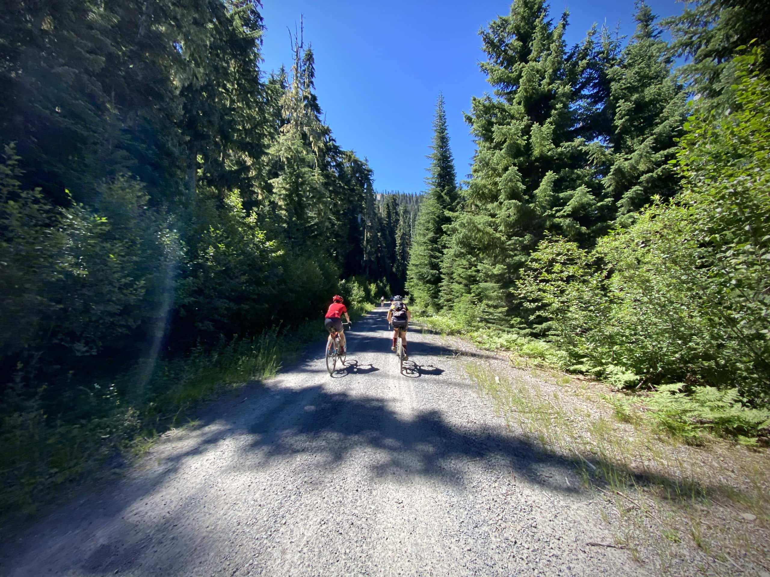 Cyclists on gravel road with Hills Peak in the North Umpqua National Forest in the distance.