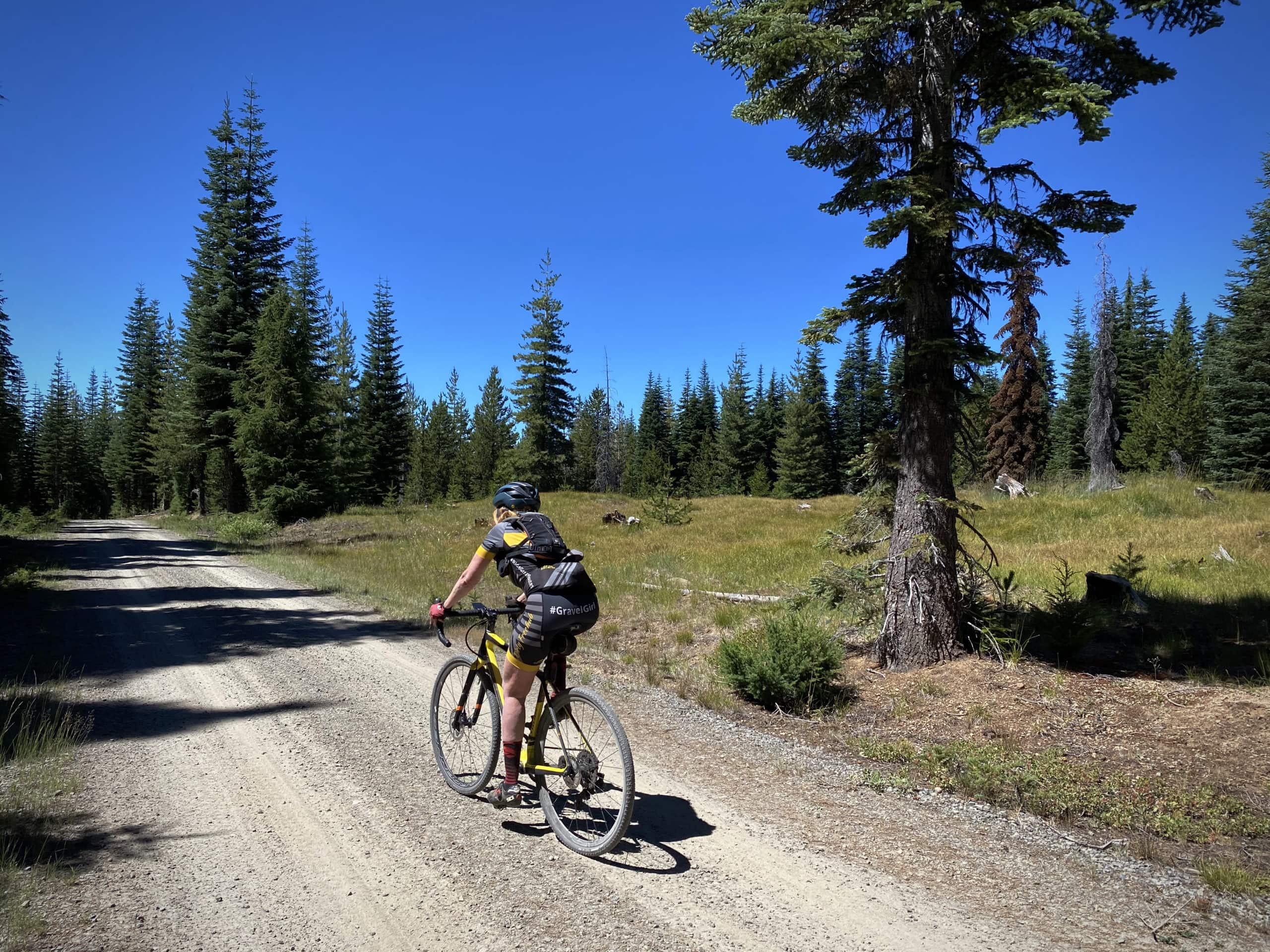 Gravel Cyclist riding through grassy meadow in the North Umpqua National forest.