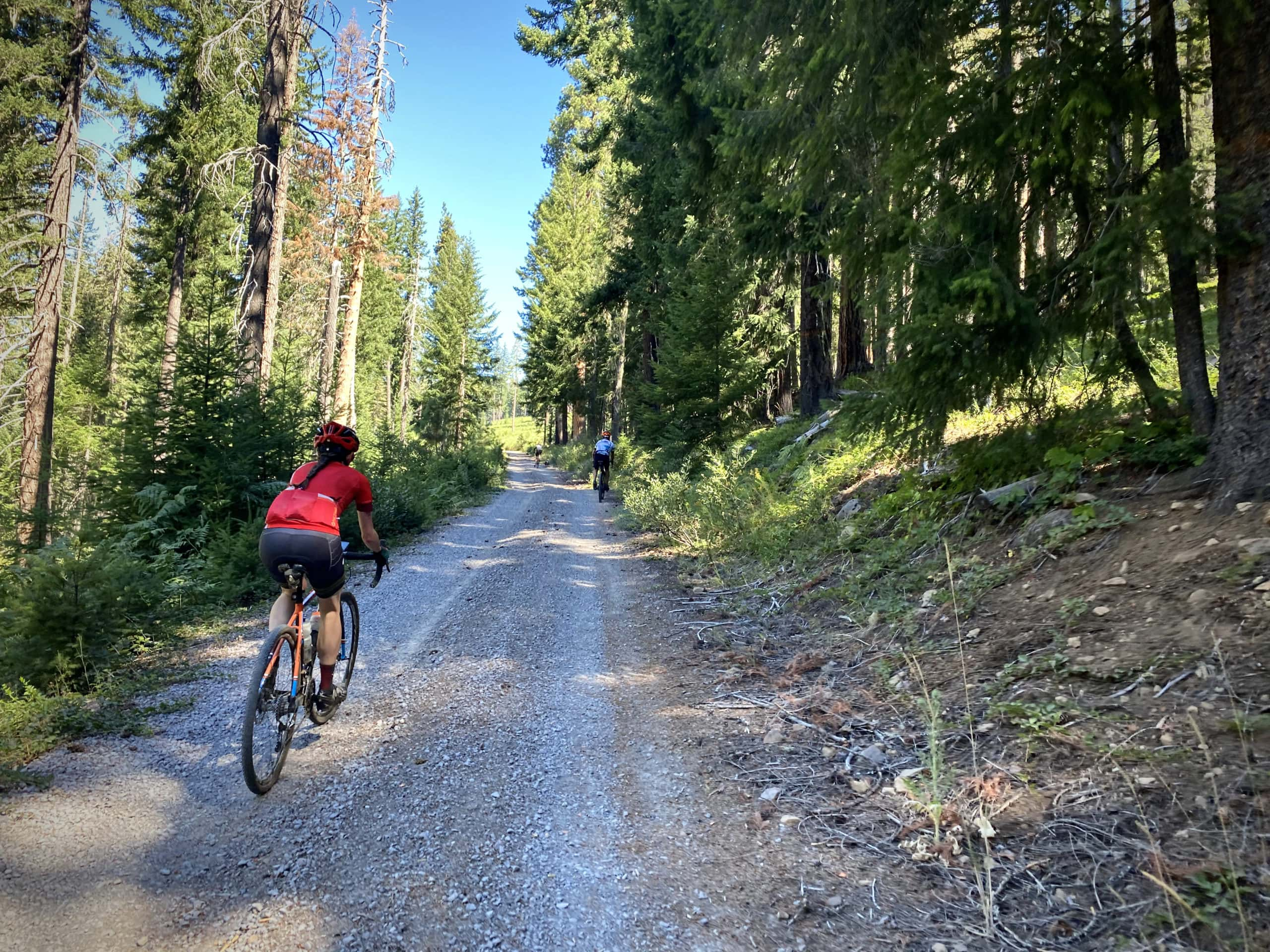 Cyclist on gravel road on the north side of Lemolo Lake in Oregon.