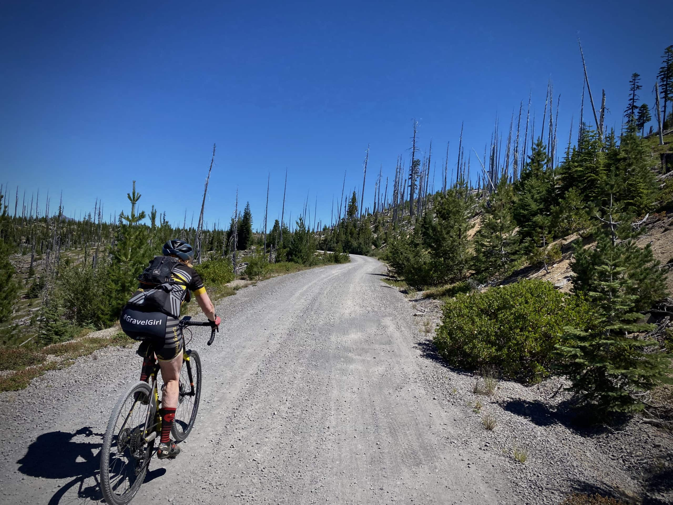 Gravel Girl riding through an old burned forest with Diamond Peak in the distance.