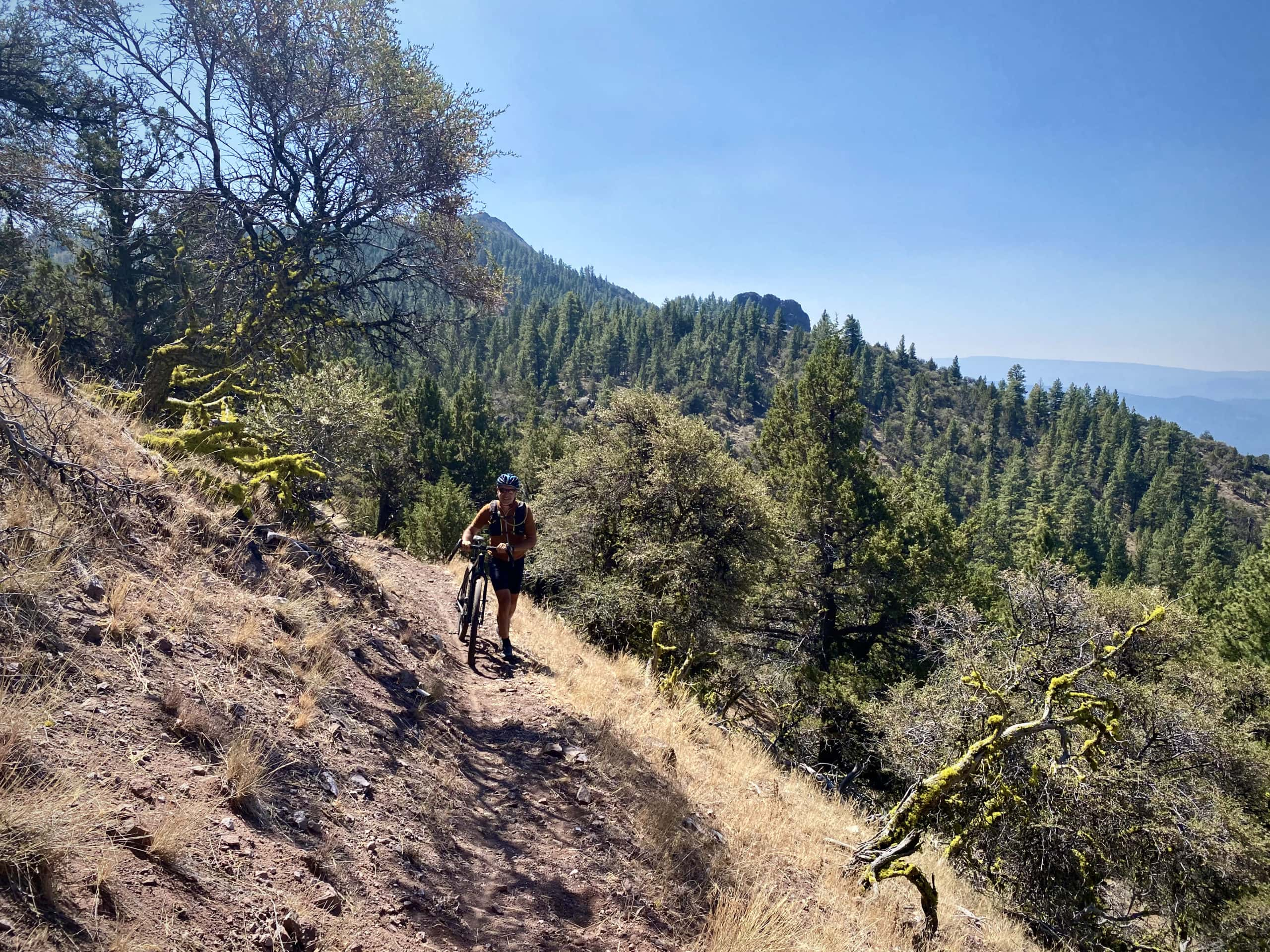 Gravel cyclist walking bike on a steep, sloping section of the Oregon Timber Trail near Avery Pass.