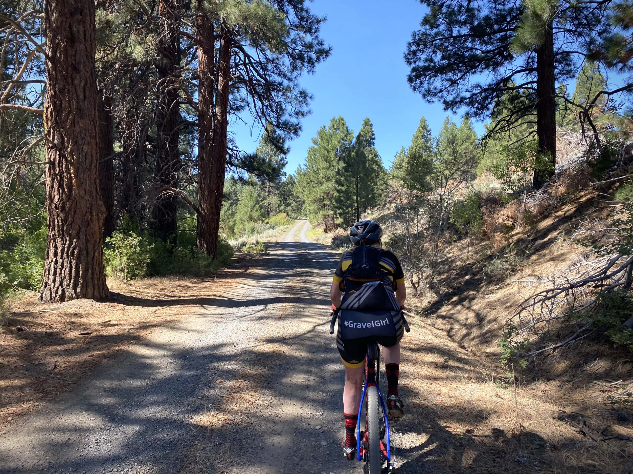 Gravel cyclist under the cover of large Ponderosa trees near Morgan Butte in the Fremont National Forest.