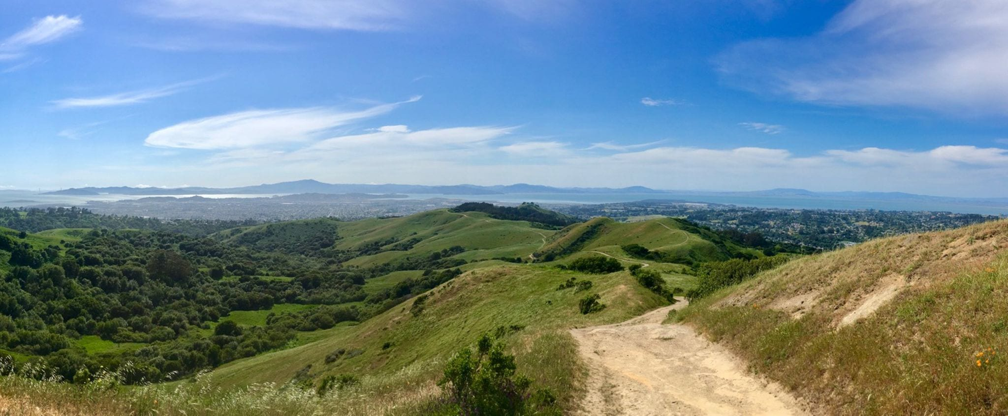 View of the bay area from ridge on gravel bike ride. Oakland, CA.