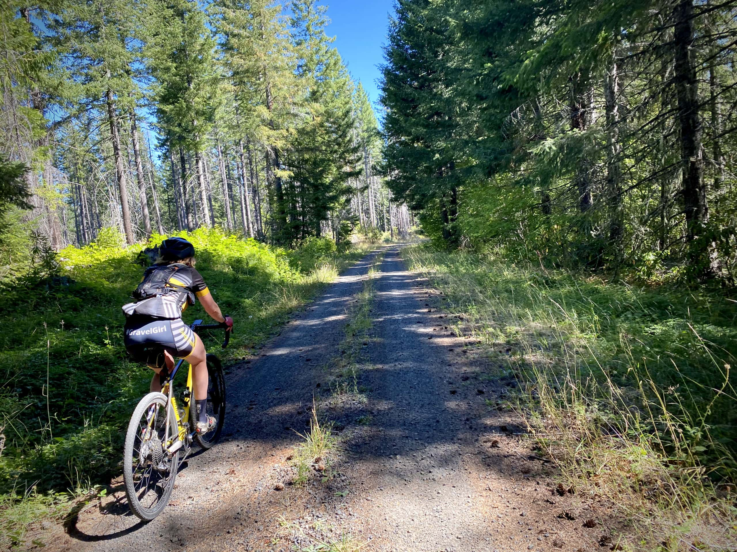Gravel Girl on Forest Service road with grass growing up between the lanes in the Willamette National Forest.