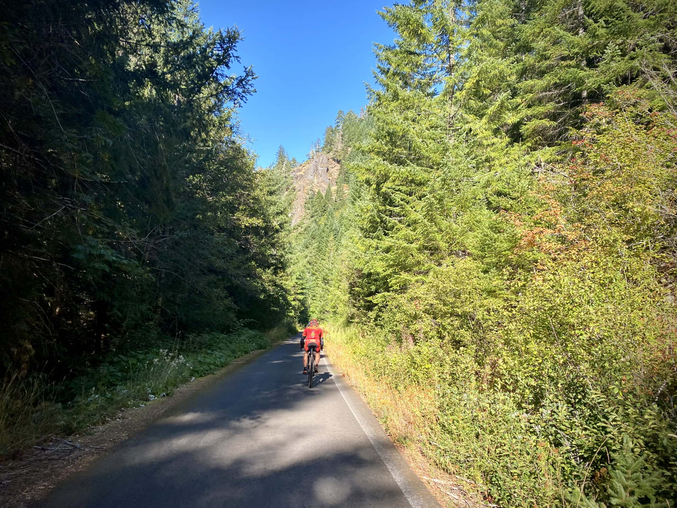 Cyclists descending NF-22 in the Willamette National Forest.