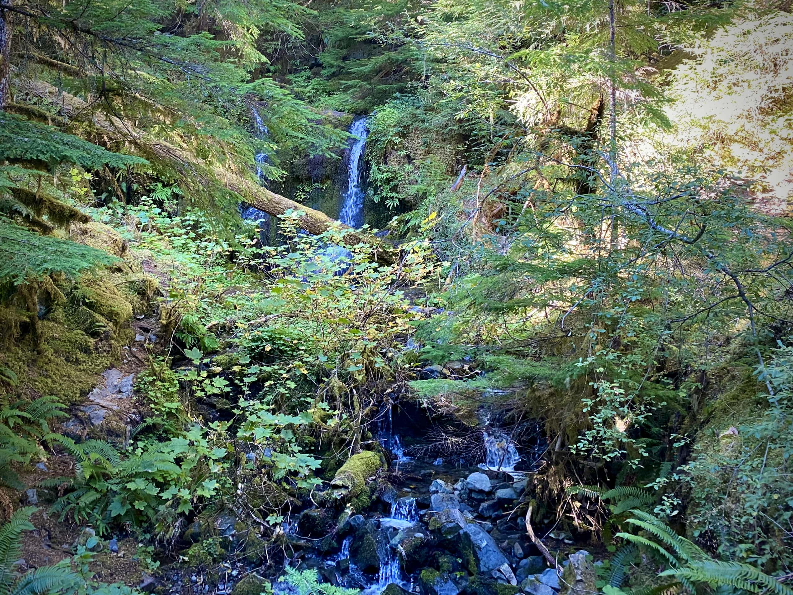 Small waterfall along NF-22 in the Willamette National Forest.