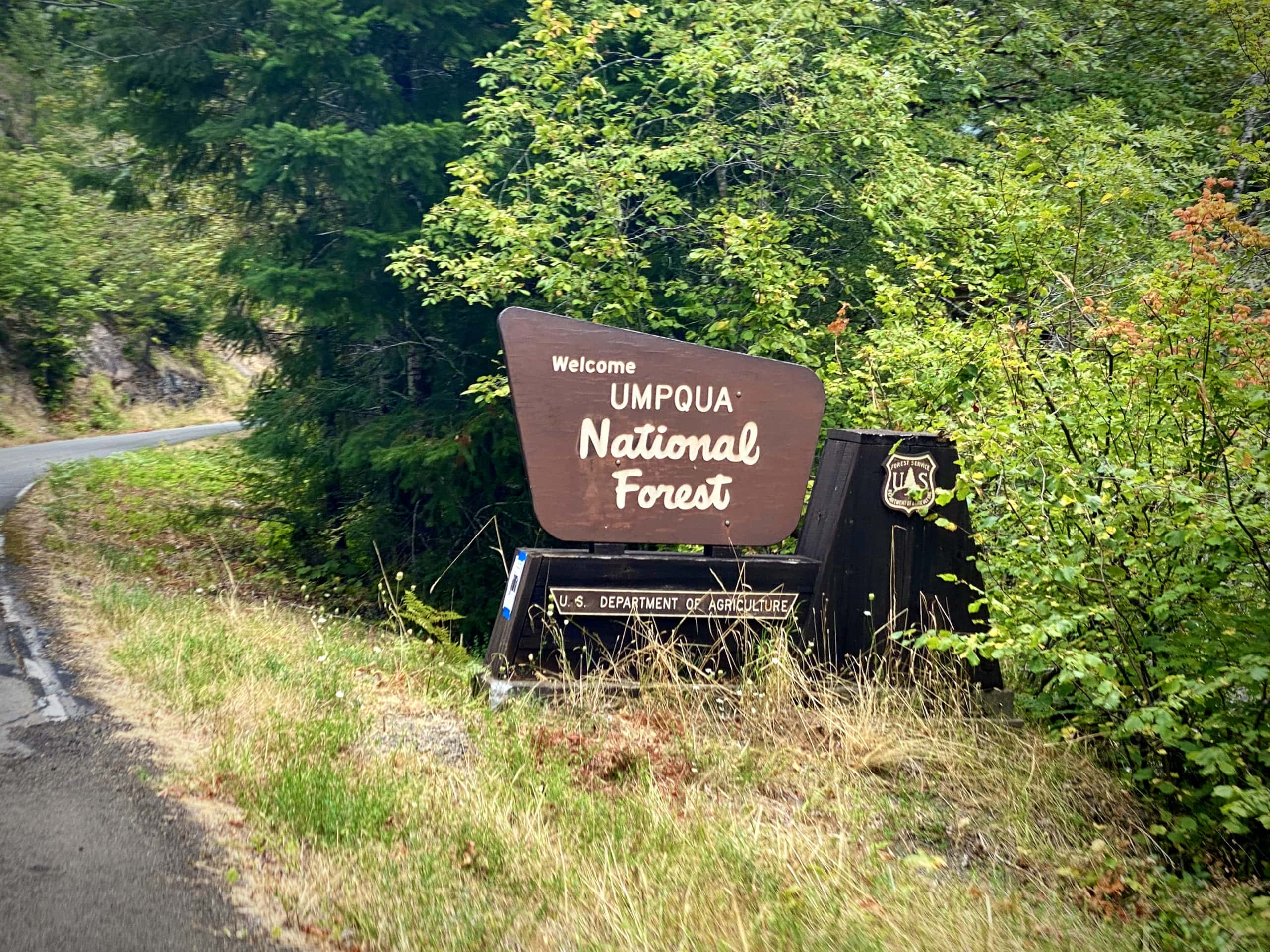 Sign for the Willamette National Forest near Cottage Grove, OR.