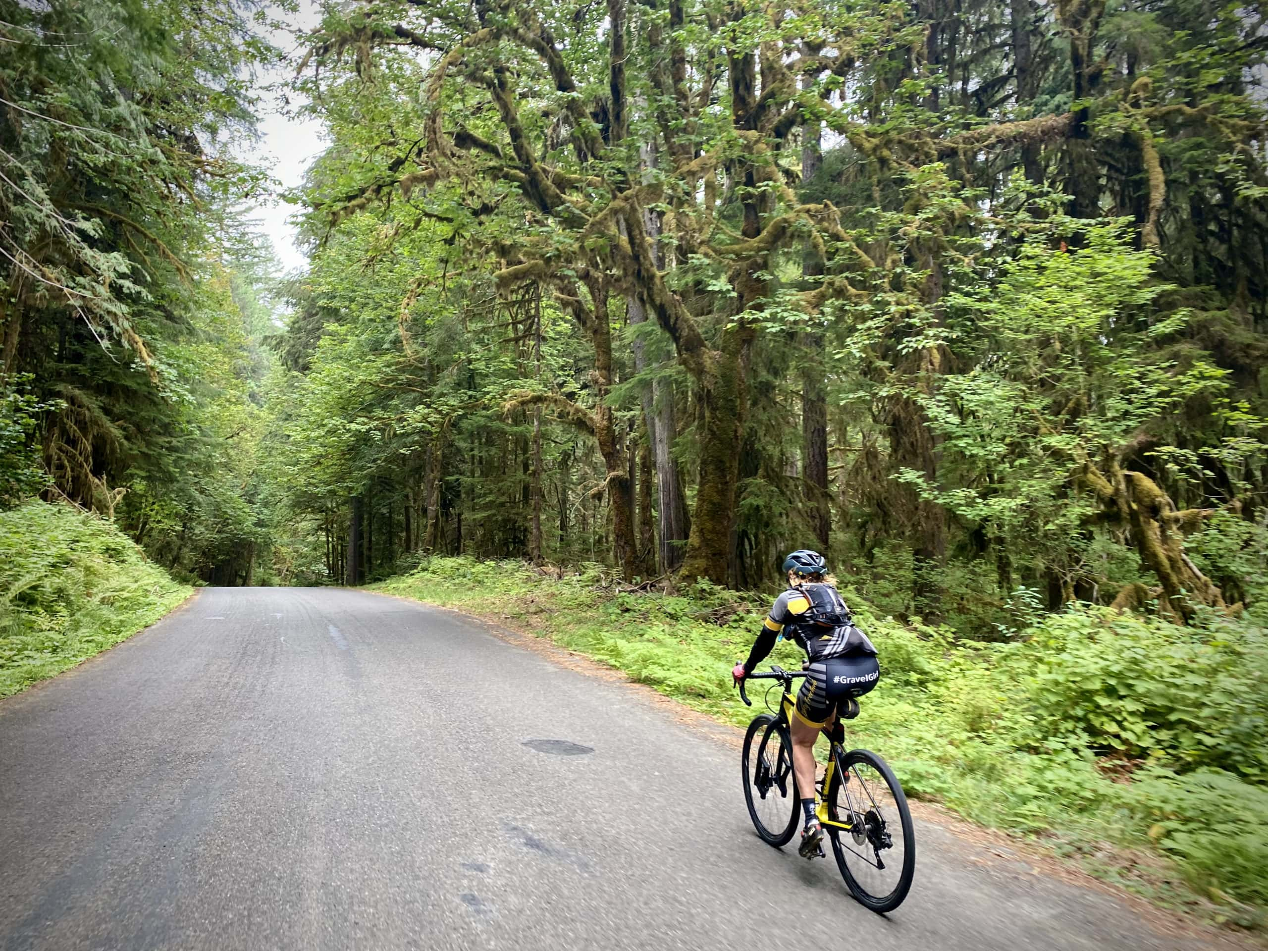 Gravel Girl on NF-22 with trees covered in moss.