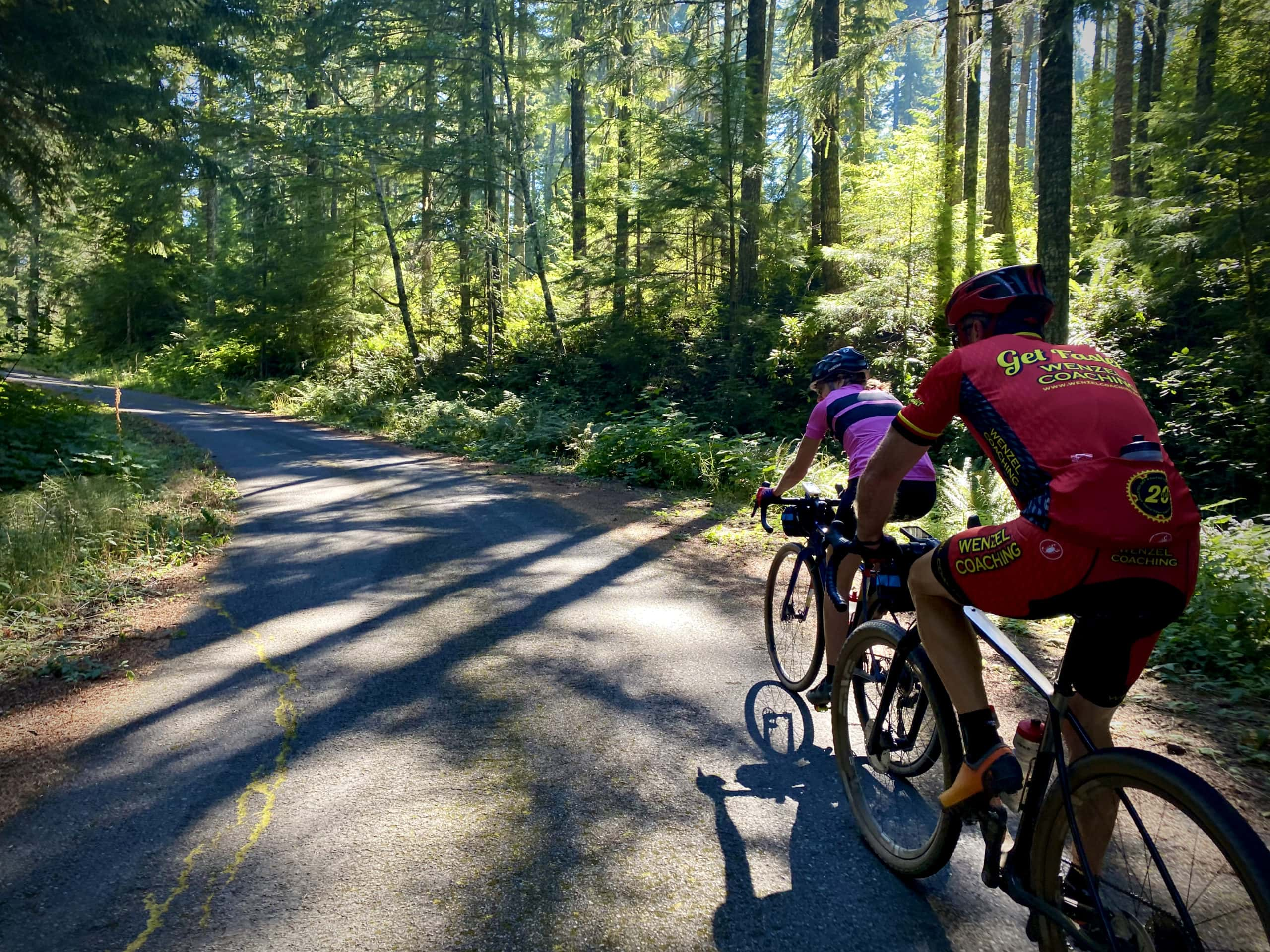 Cyclists climbing NF 1746 in the cover of shaded trees.