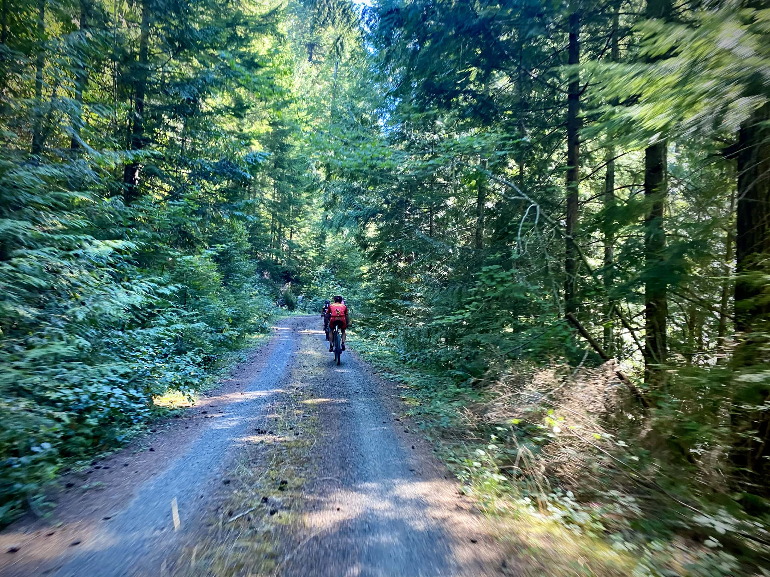 Gravel cyclist on one-laned gravel, forest service road in the Willamette National Forest.