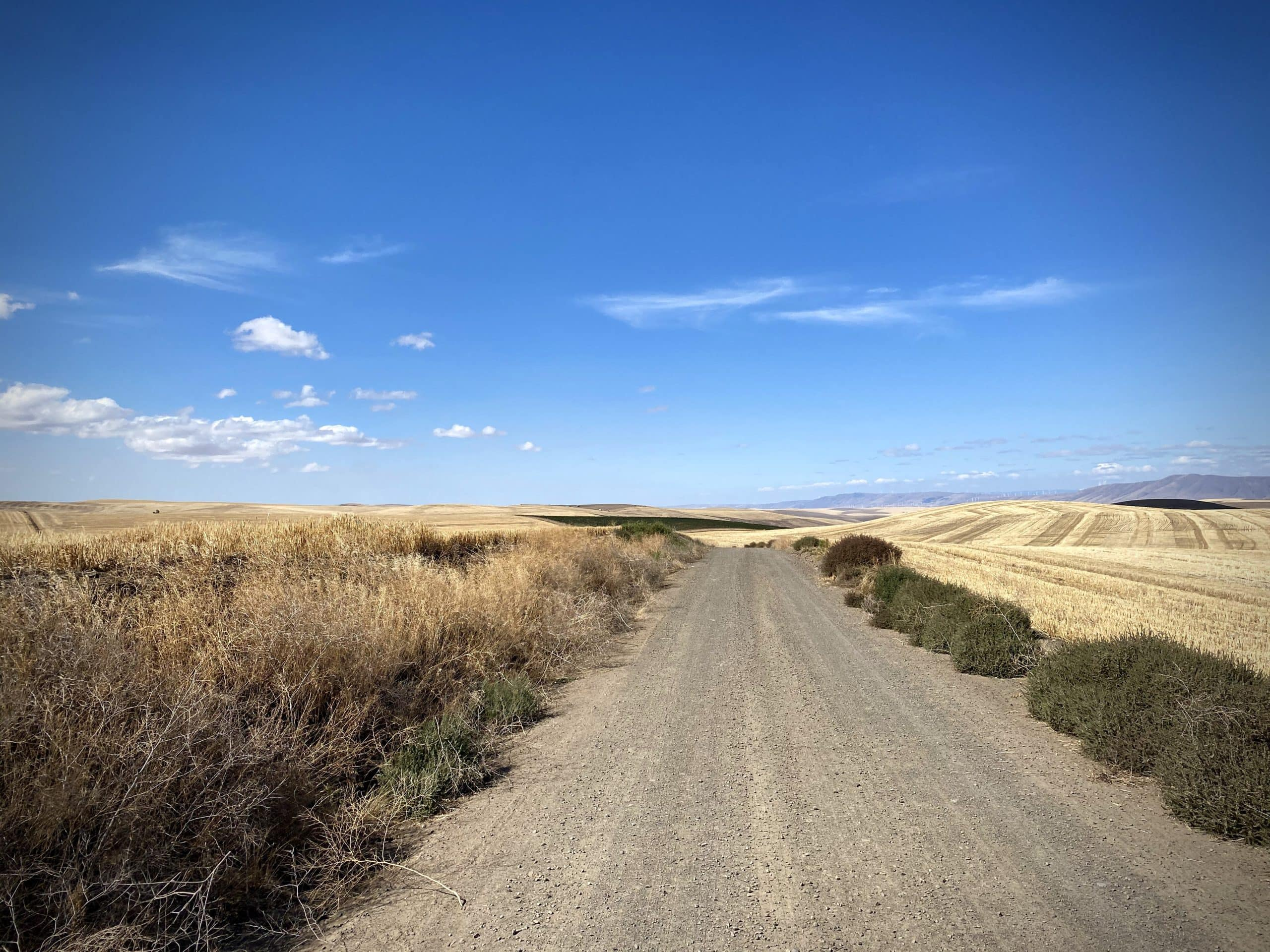 Gravel road in the Tygh Valley area.
