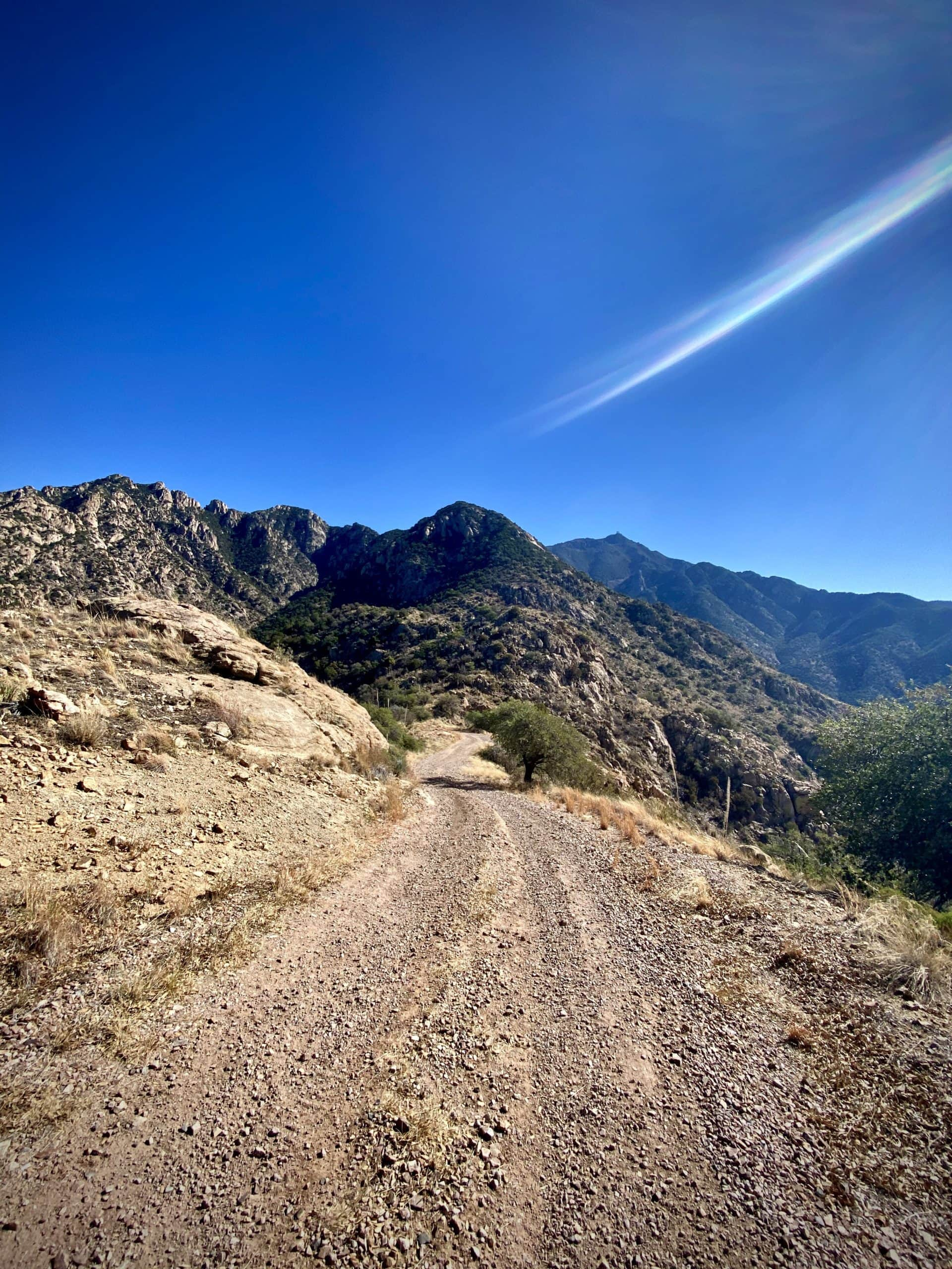 The road and descent leading back down from the antennas in the Santa Rita mountains.