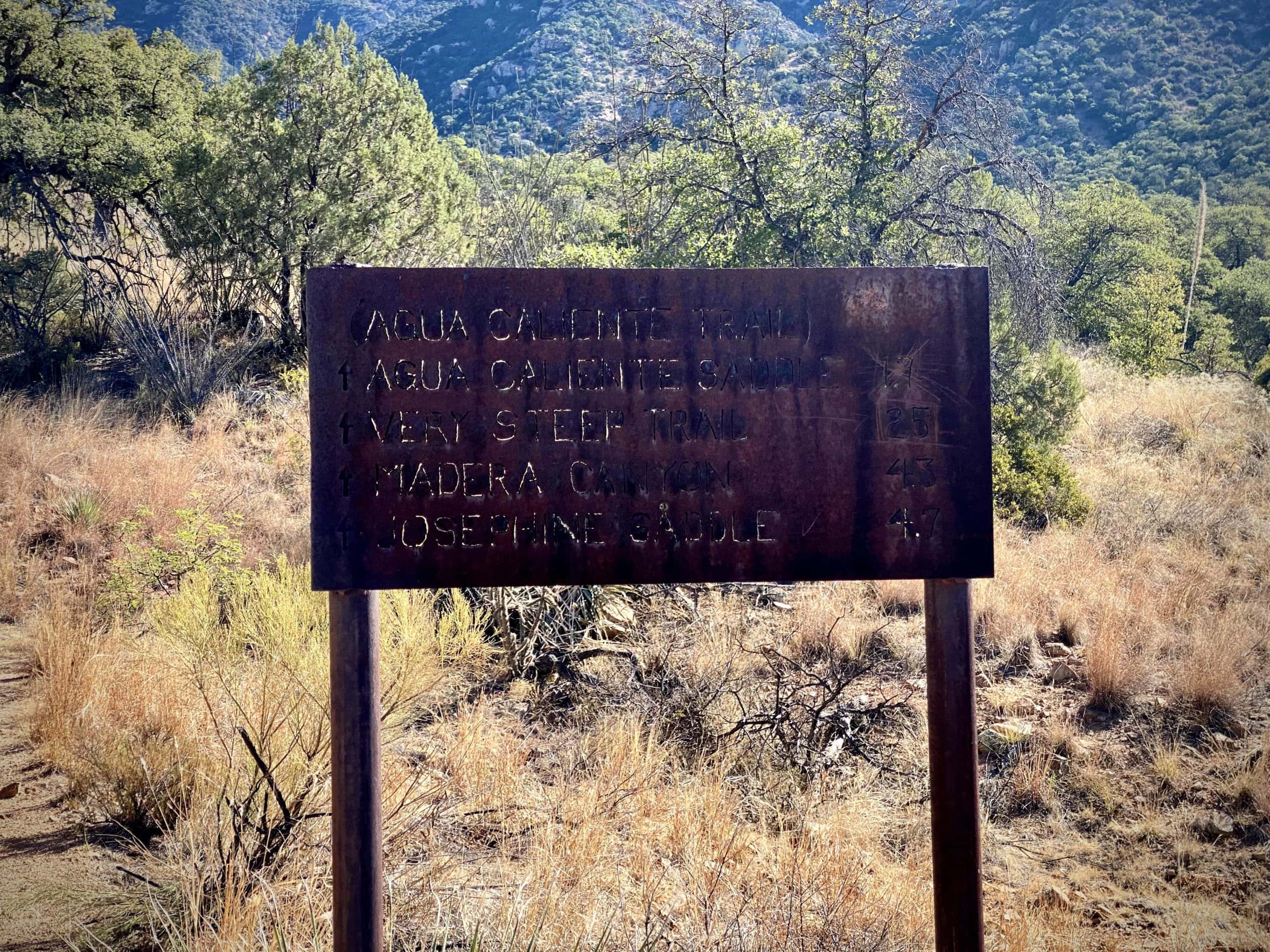Trail head sign for Aqua Caliente Canyon and other trails.
