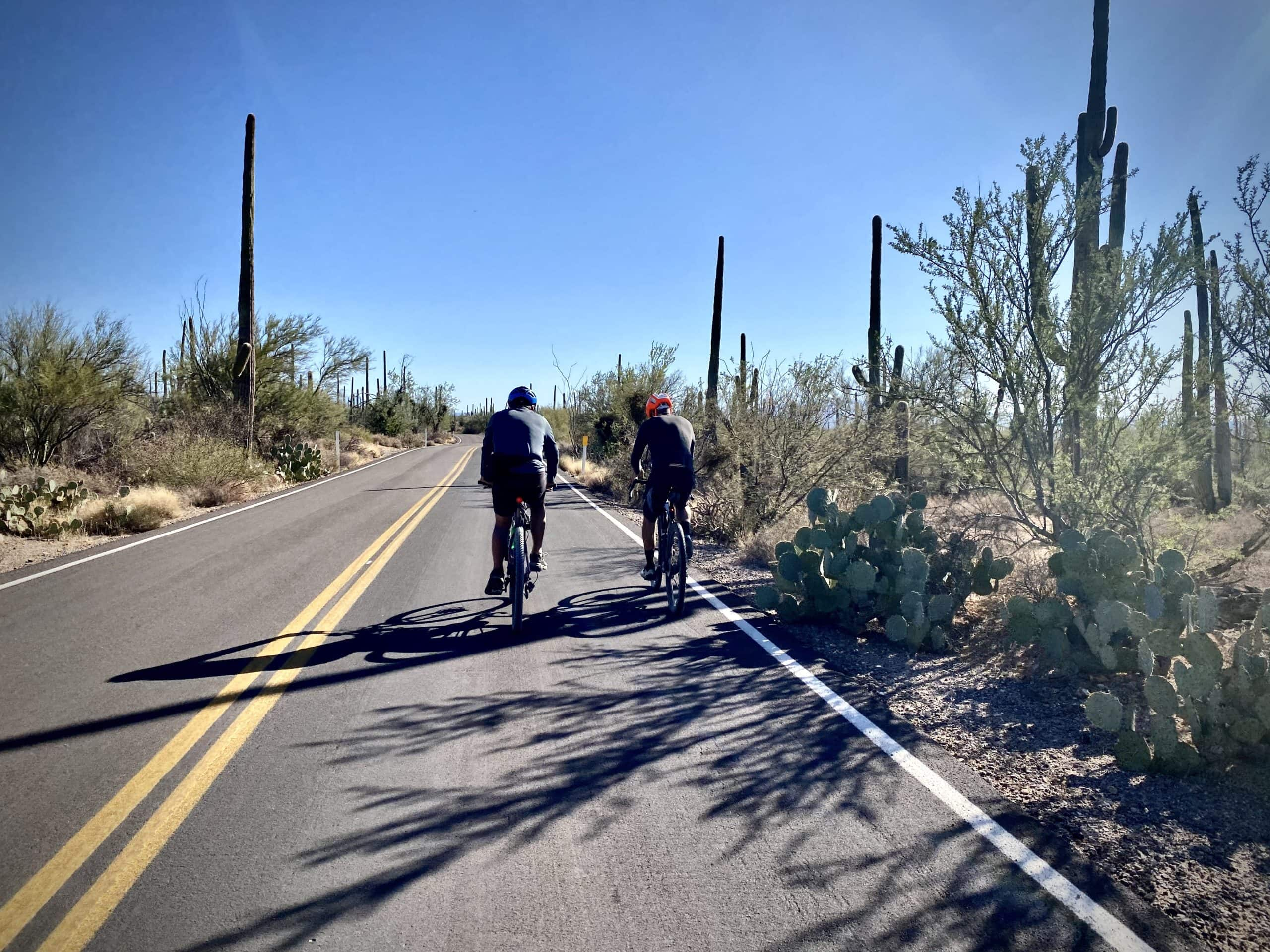 Cyclist on Kinney Drive in Saguaro National Park West.