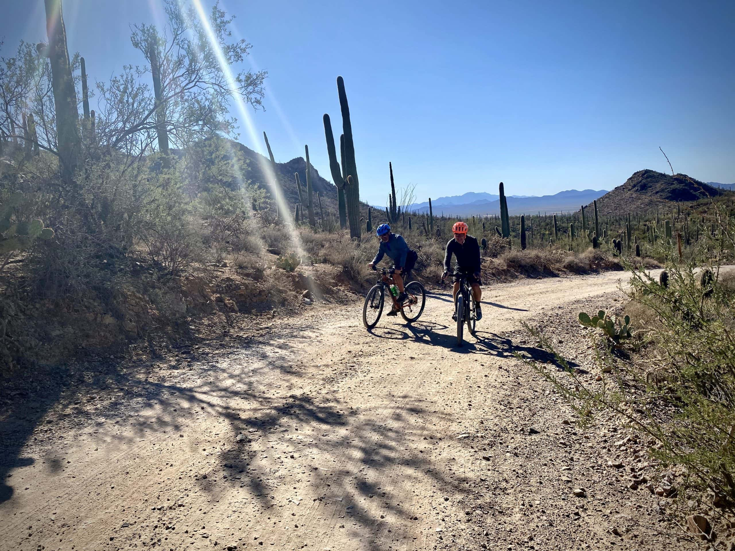 Two cyclists on gravel road in Saguaro National Park near Tucson, AZ.