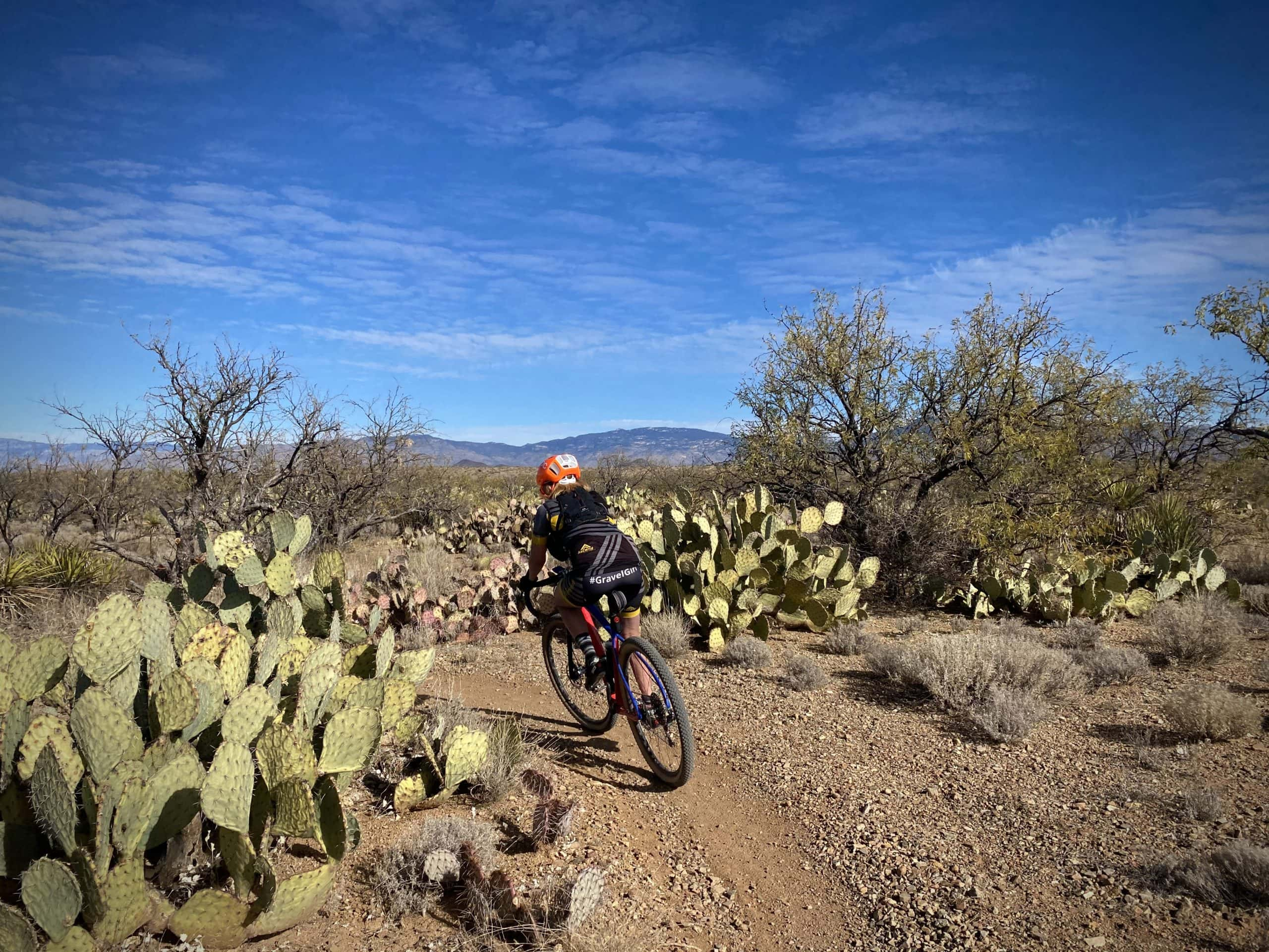 Gravel rider zipping between prickly pear cactus on the Arizona Trail.