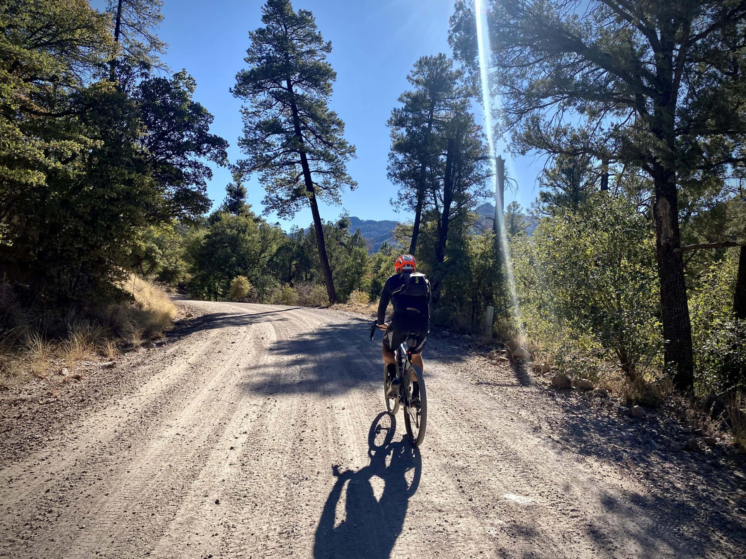 Cyclist on the Pinery Canyon road in the Chiricahua Mountains.