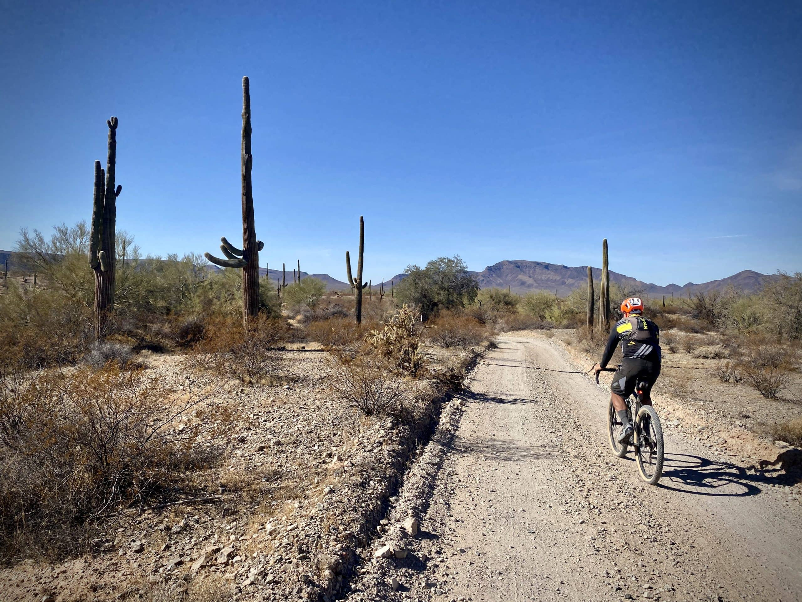 Charlie Bell road leading into Daniel's Arroyo where the desert is barre and dry.