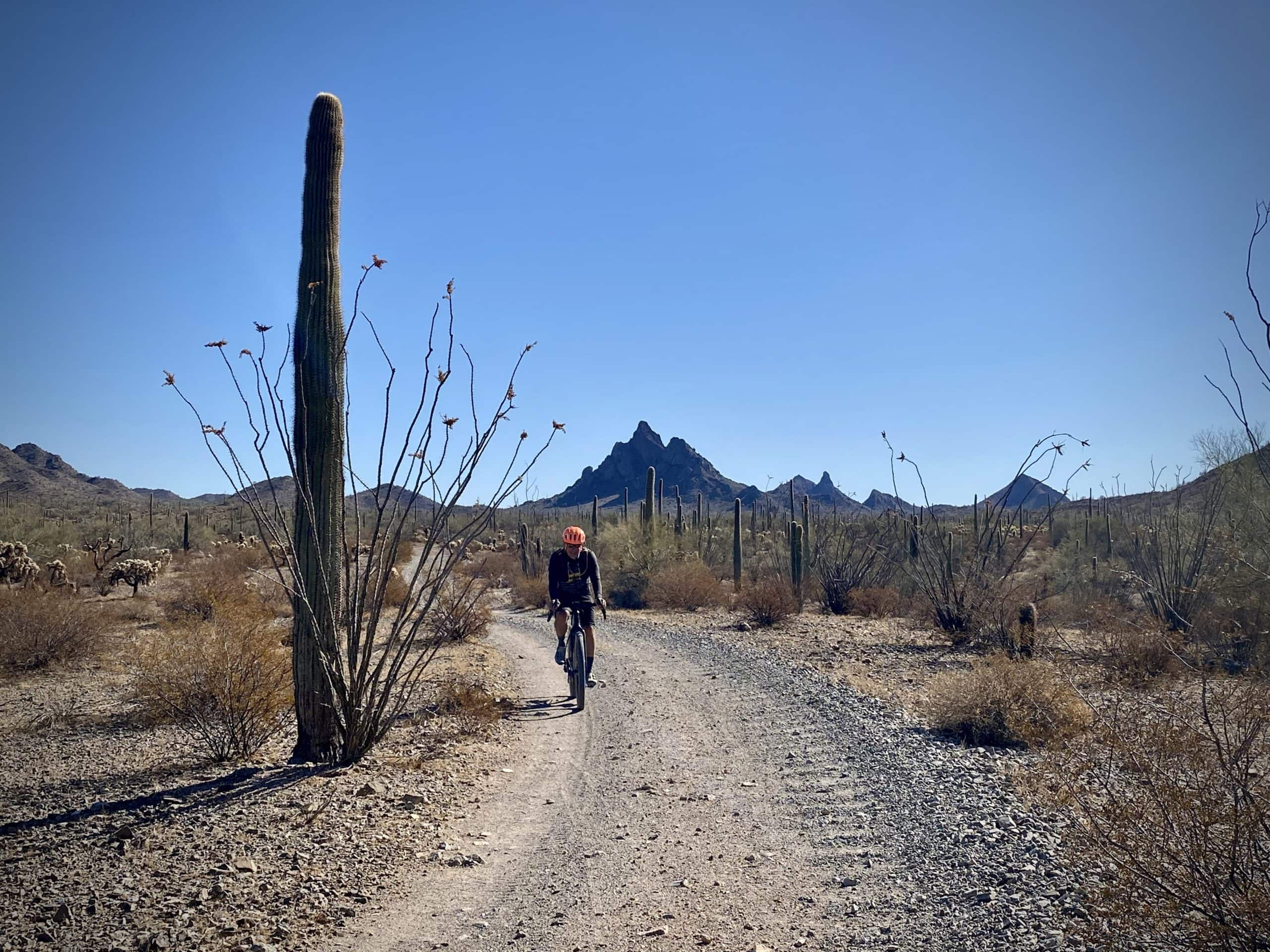 Cyclist on Charlie Bell road with North Ajo peak in the background.