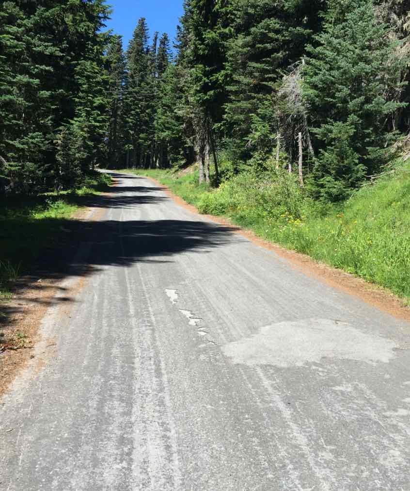 The West Leg road up to Timberline Lodge in Oregon.