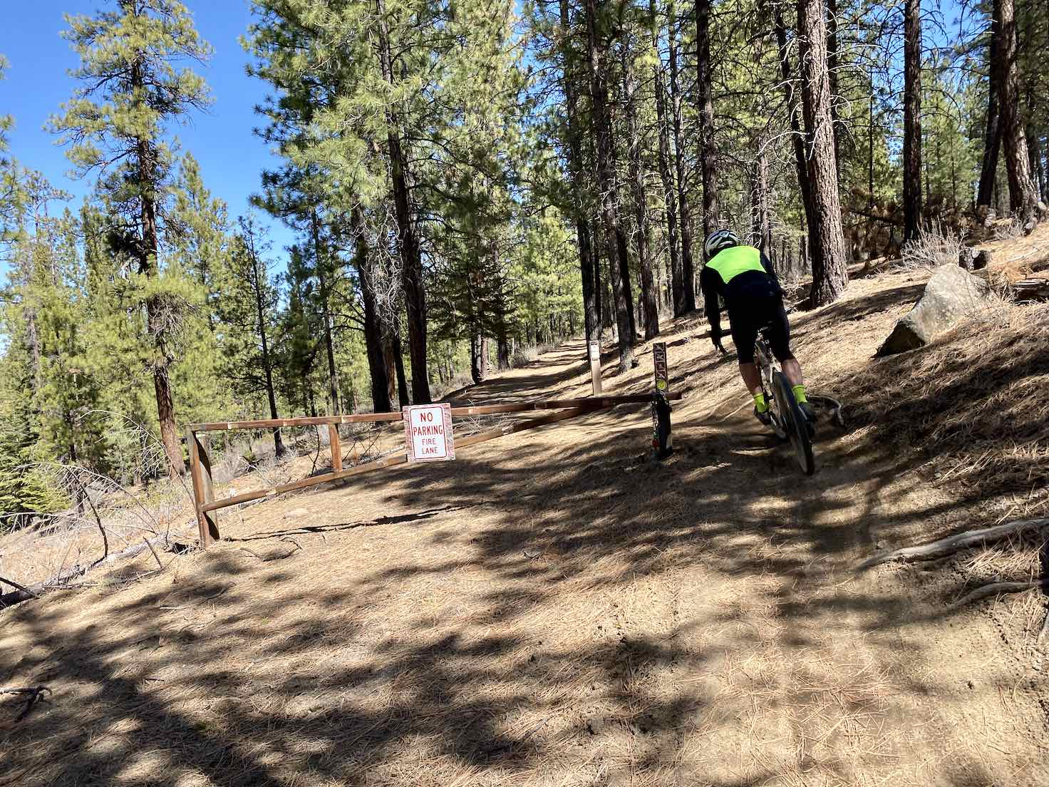 Gravel cyclists on the Western Larch trail in Shevlin park. Double-track.