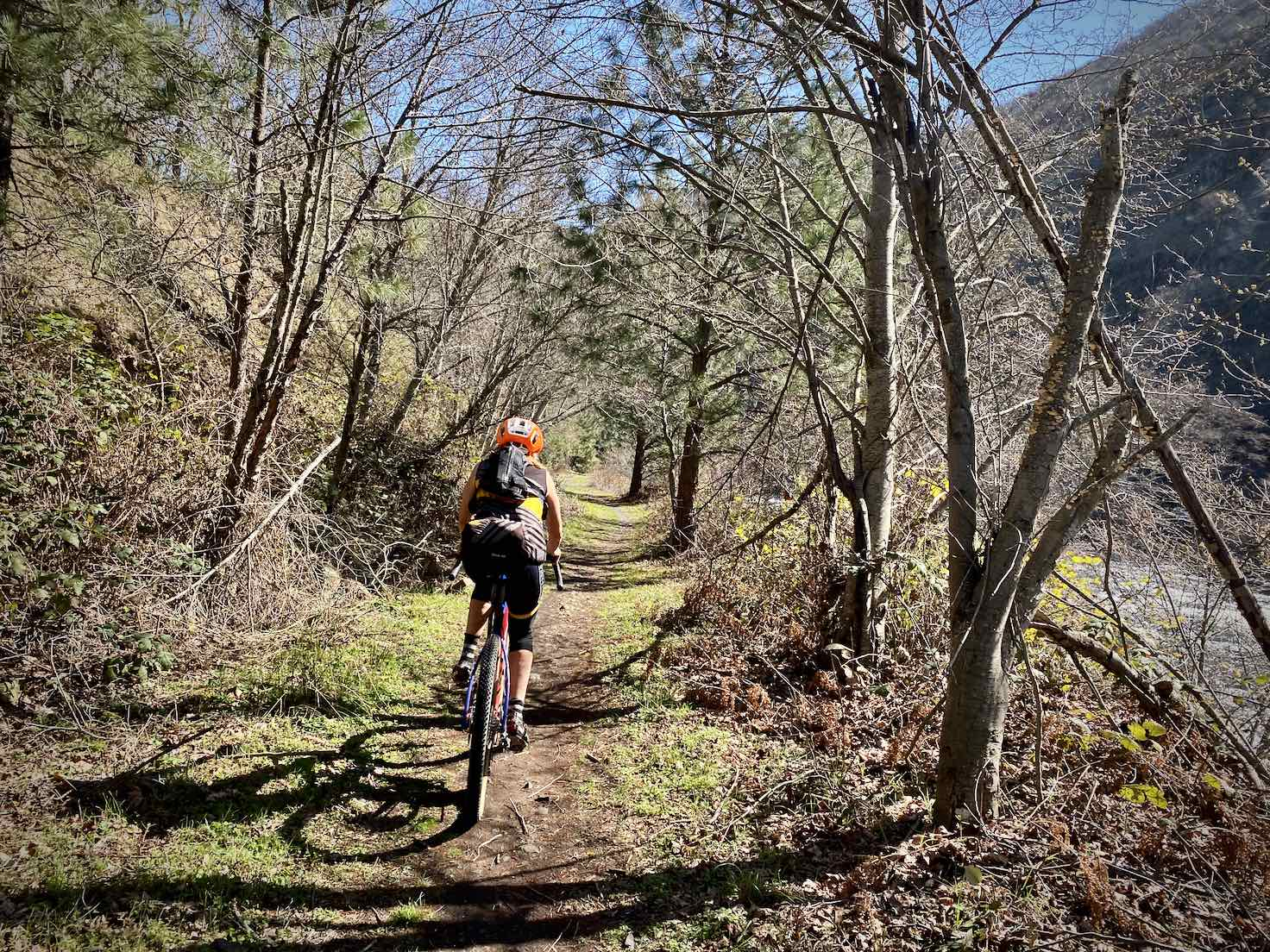 Woman cyclist on single track portion of the Klickitat Trail.