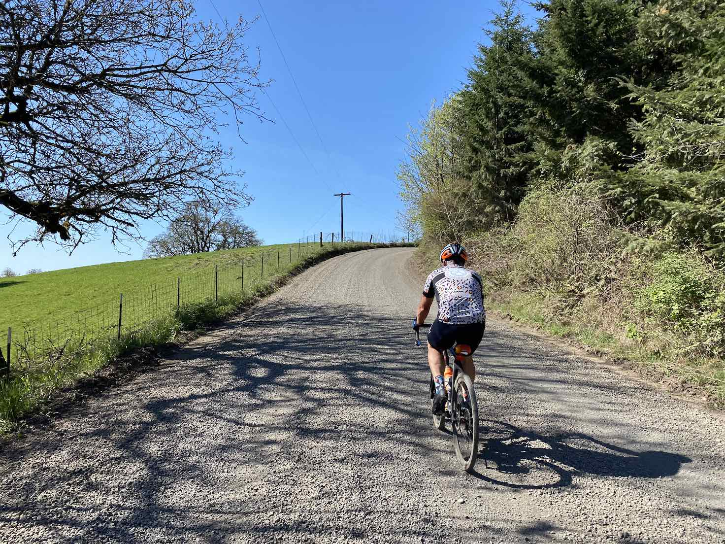 Cyclist on the lower section of Mt. Richmond climb in the Willamette Valley.