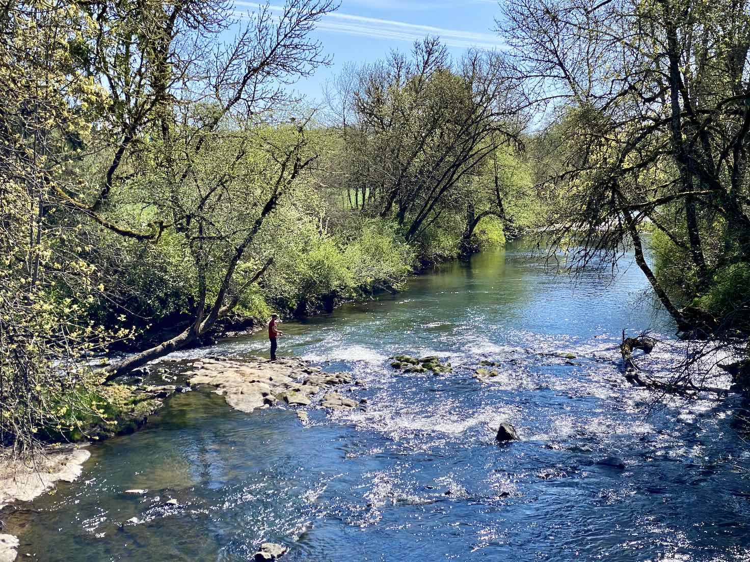 A fisherman working the Yamhill River.