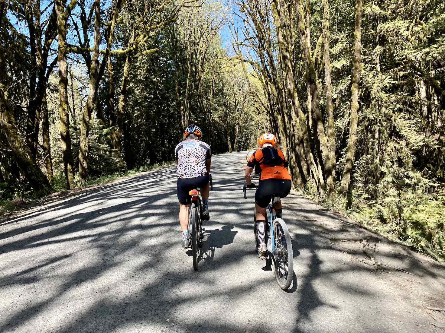 Riding along the North Yamhill river.