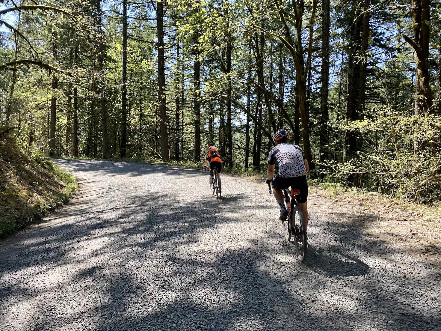 Cyclists descending on paved road through the woods.