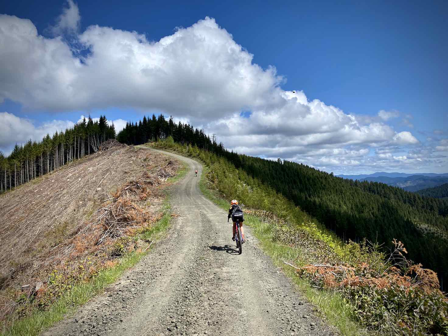 Gravel girl climbing a logging road along a ridge in the Siuslaw forest.