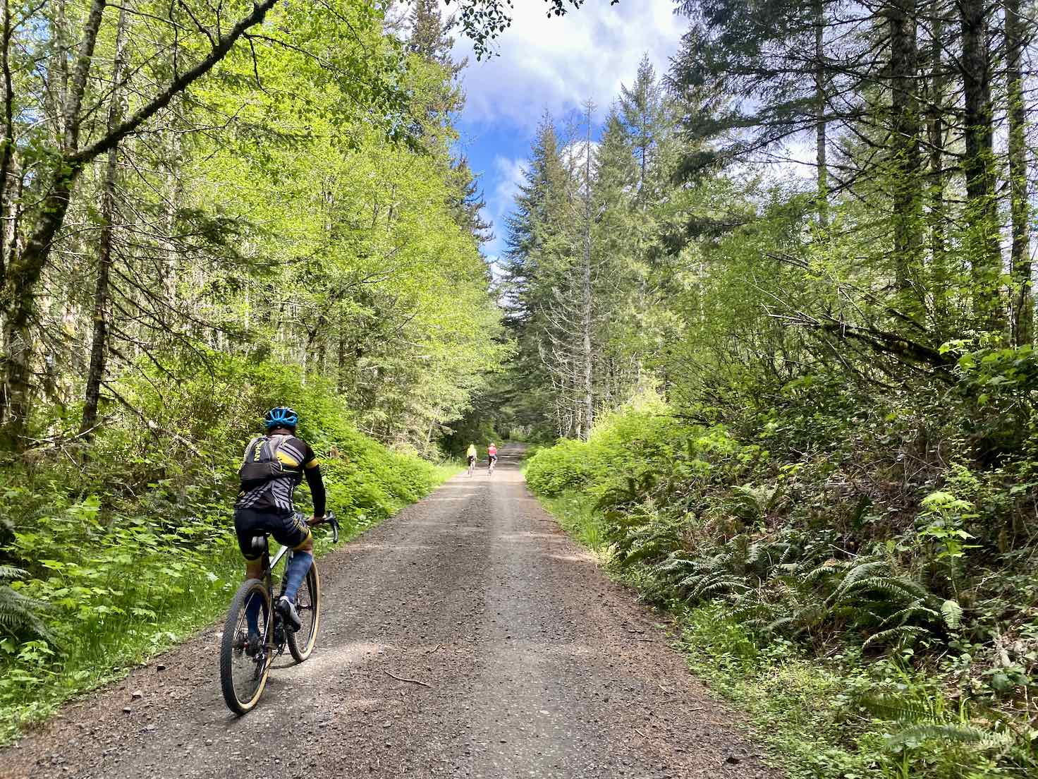 Cyclist on gravel road that is hard-packed in the Siuslaw National Forest.