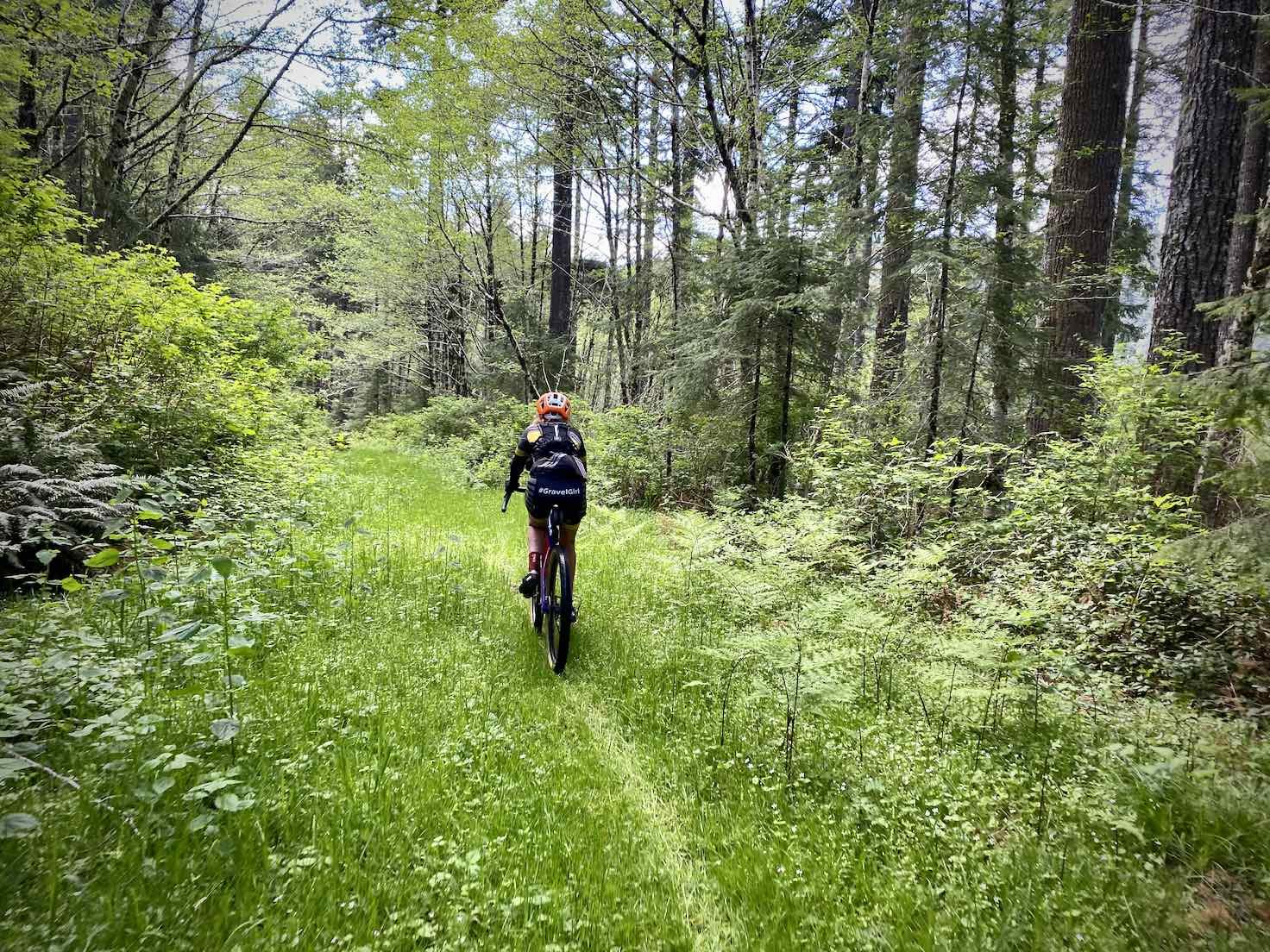 Gravel Girl riding the C2C trail, deep grassy.