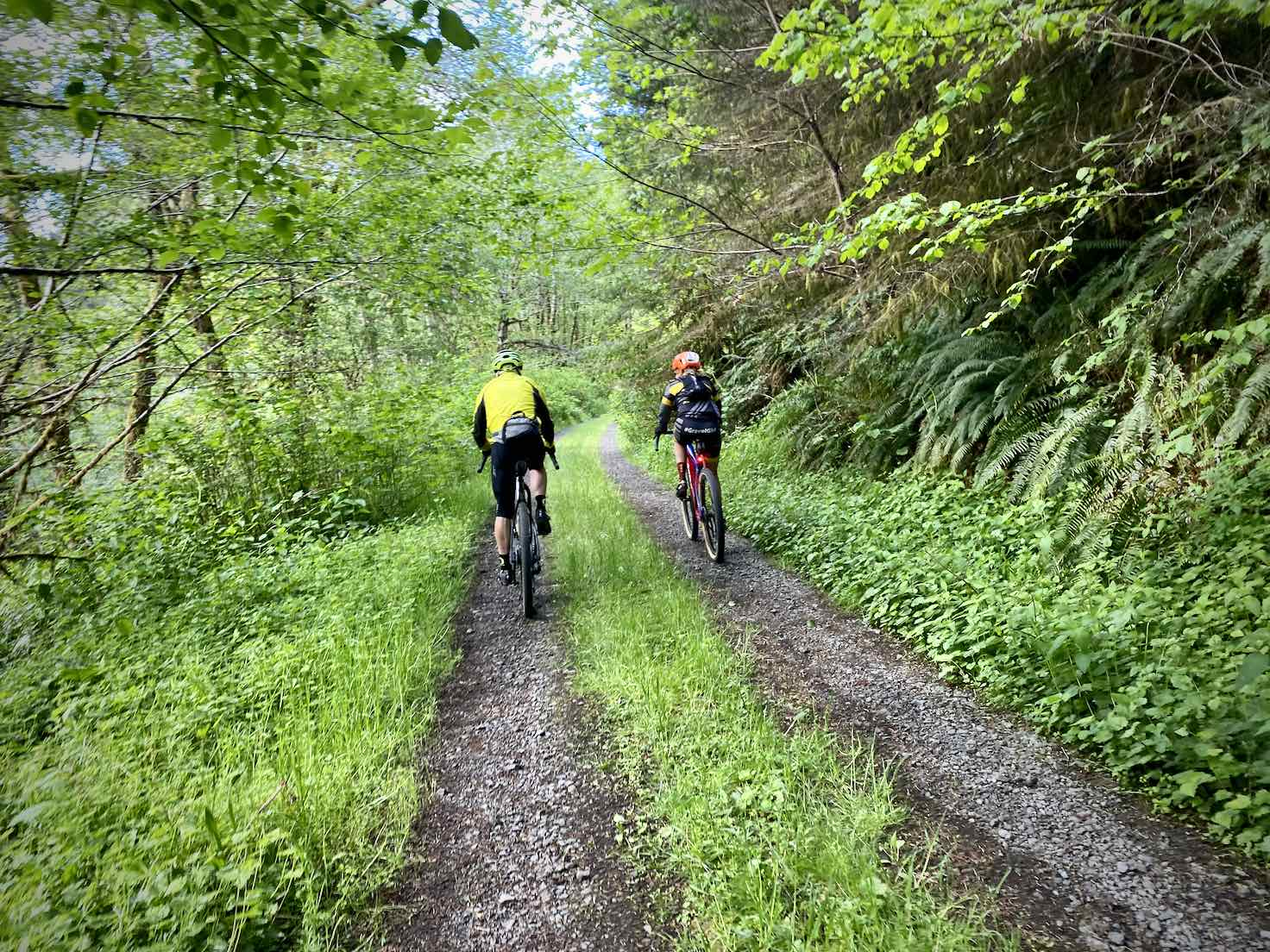 Cyclists climbing the wet and green weed-whacker hill.