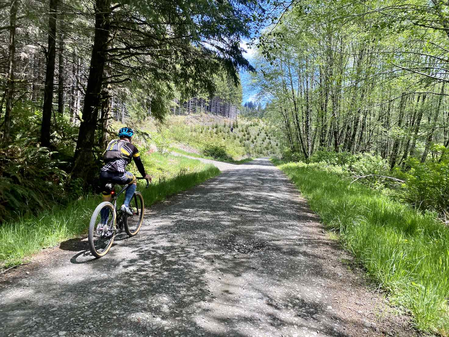 Cyclist on the gravel portion of NF-31 in Oregon.