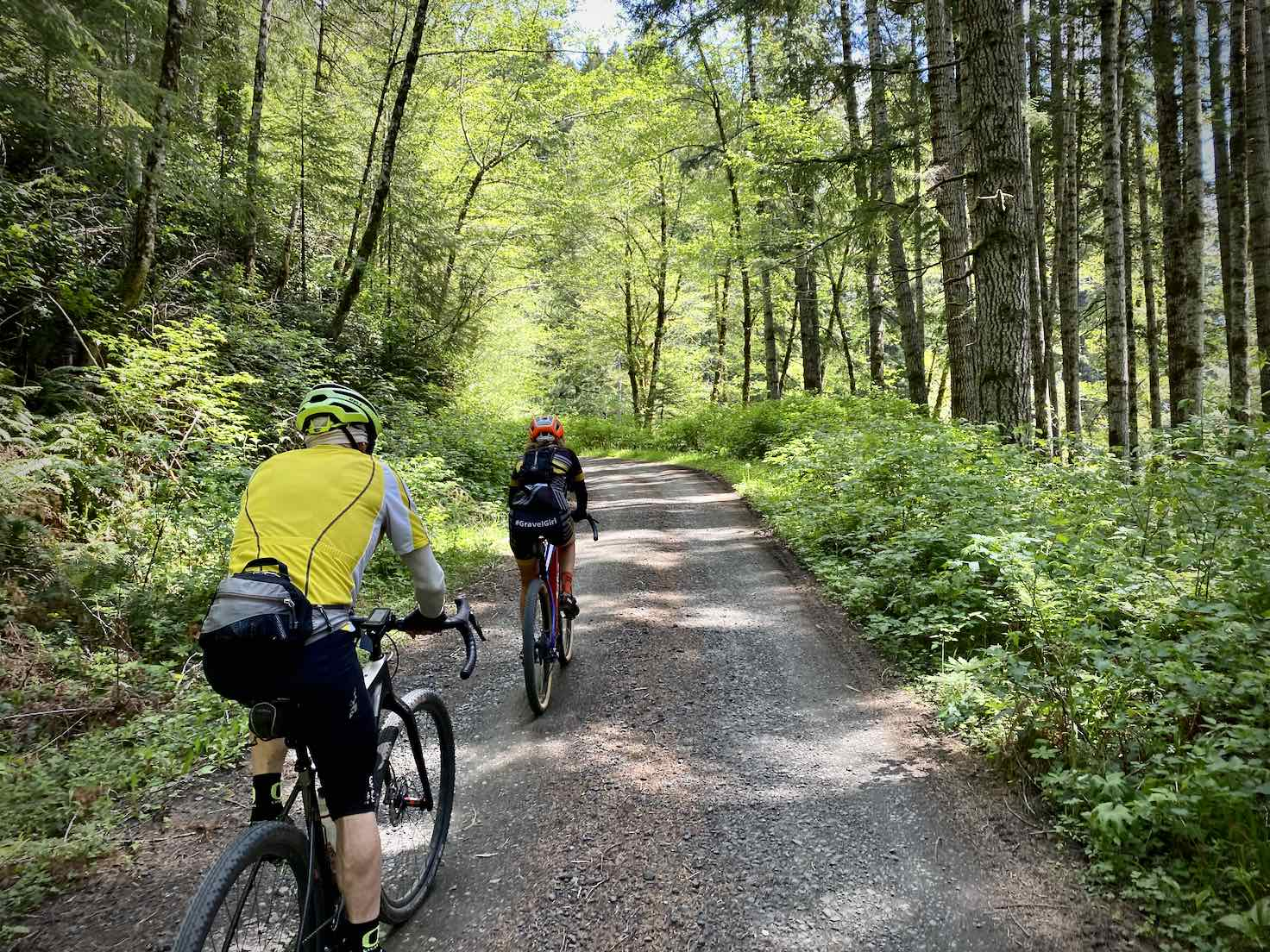 Gravel Girl and buddy riding the gravel portion of Nf 31 in the deep, green forest.