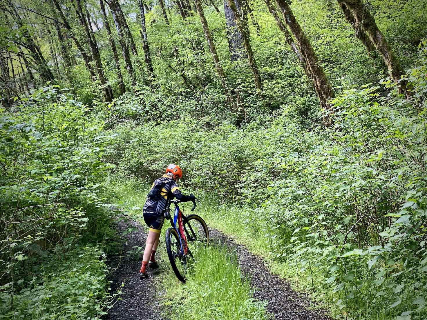 Gravel Girl pushing her bike uphill in the Coast Mountains of Oregon.