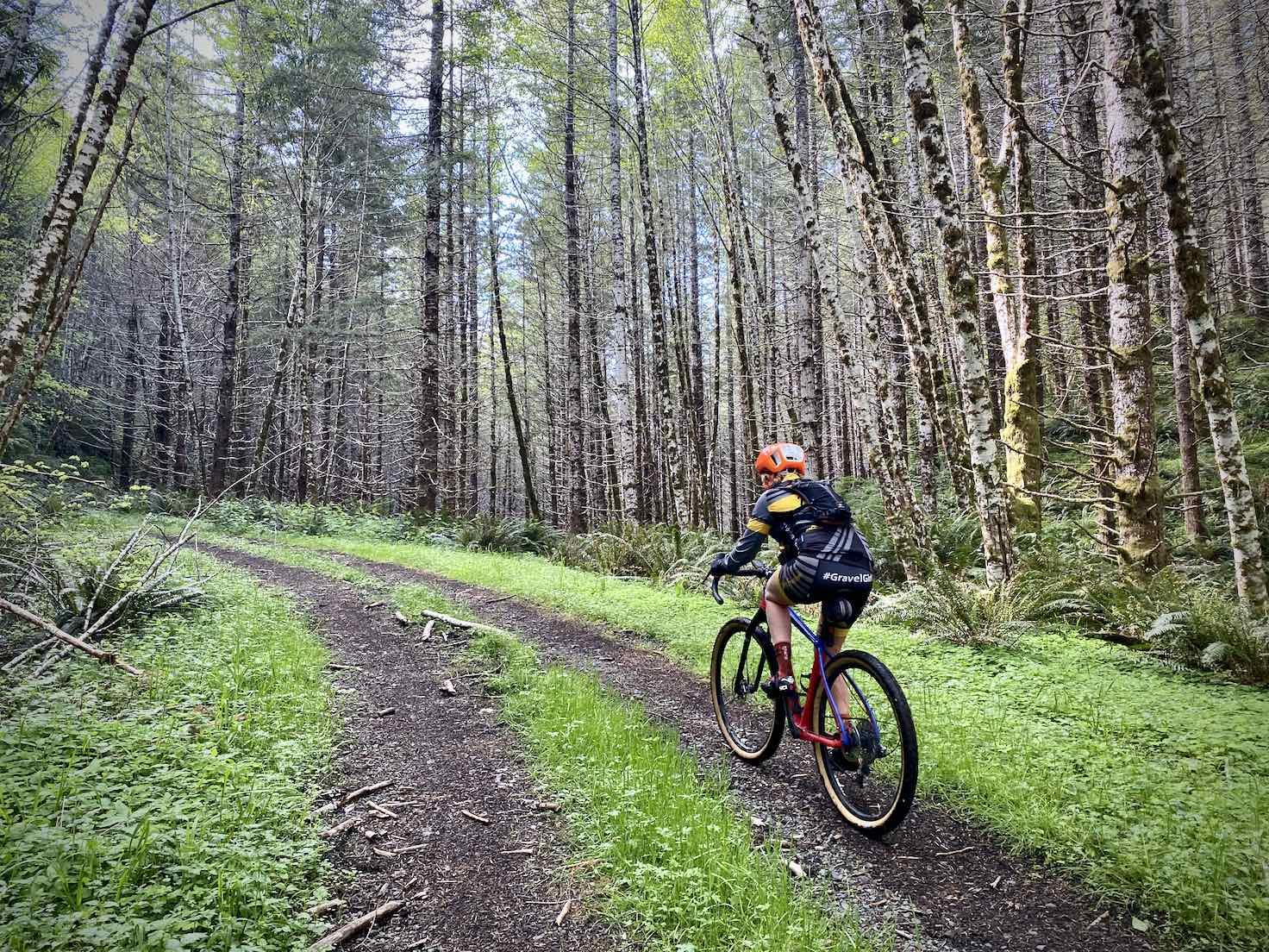 Woman gravel cyclist riding a primitive gravel road deep in the Coast Range of mountains in Oregon.