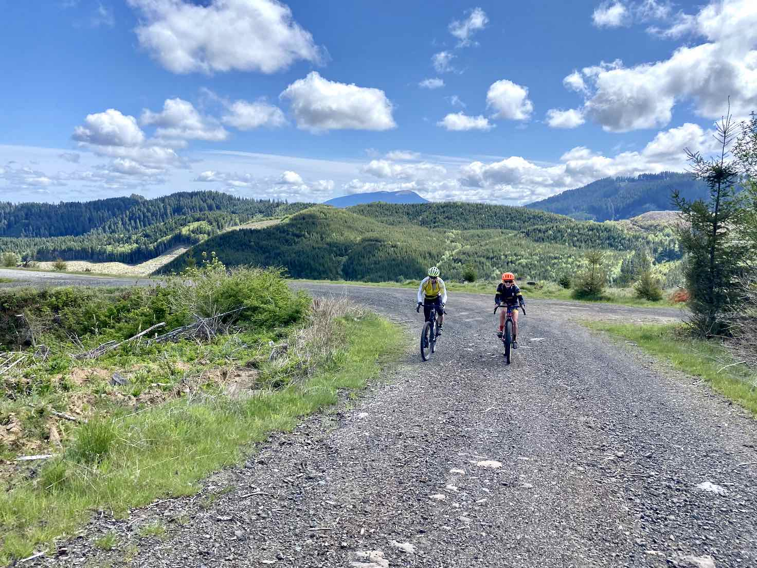 Cyclists riding gravel road through a logged out section in the Coast Range near Corvallis, OR.